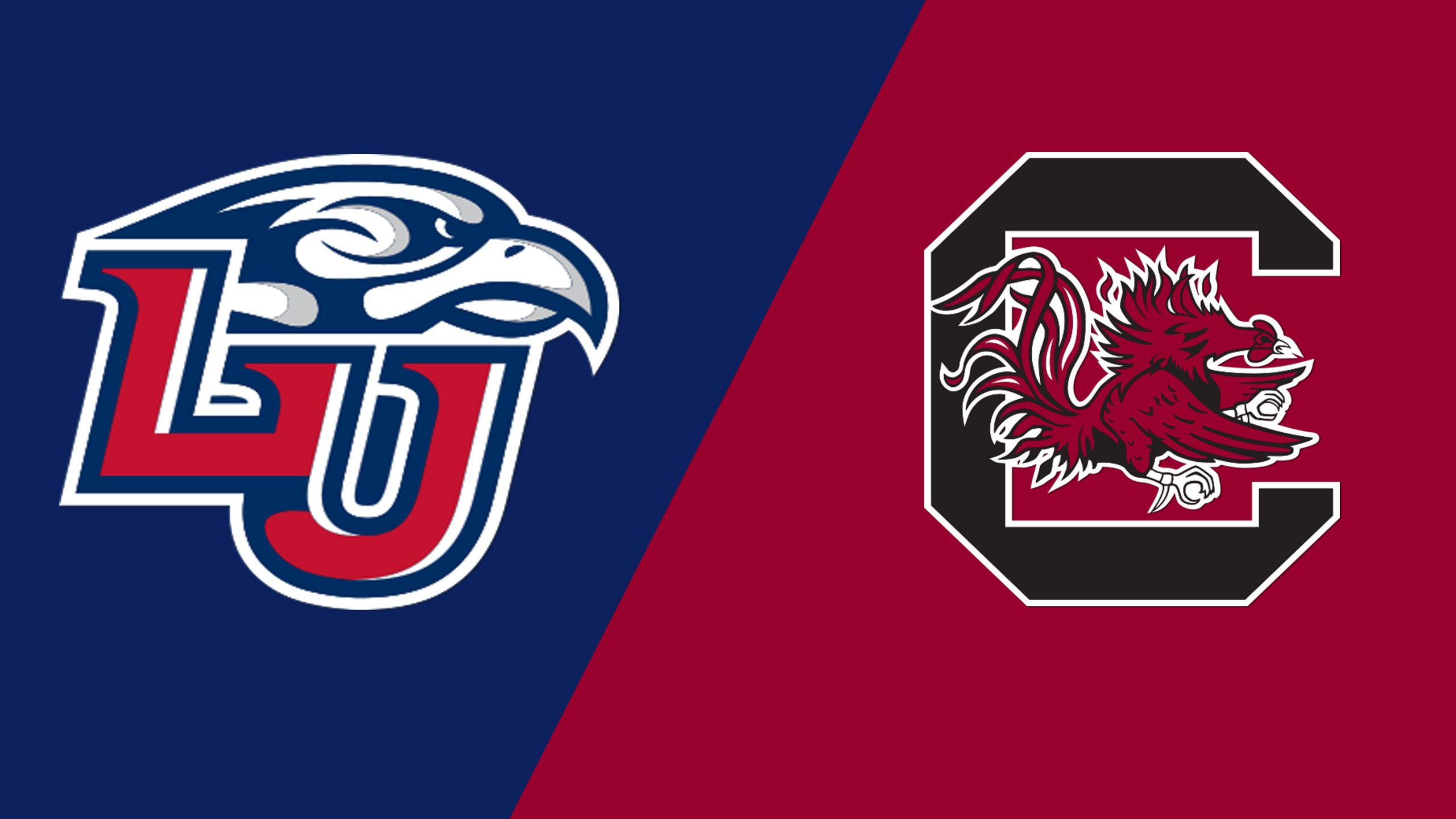 Liberty vs. #9 South Carolina (Site 10 / Game 7) (NCAA Softball Championship)