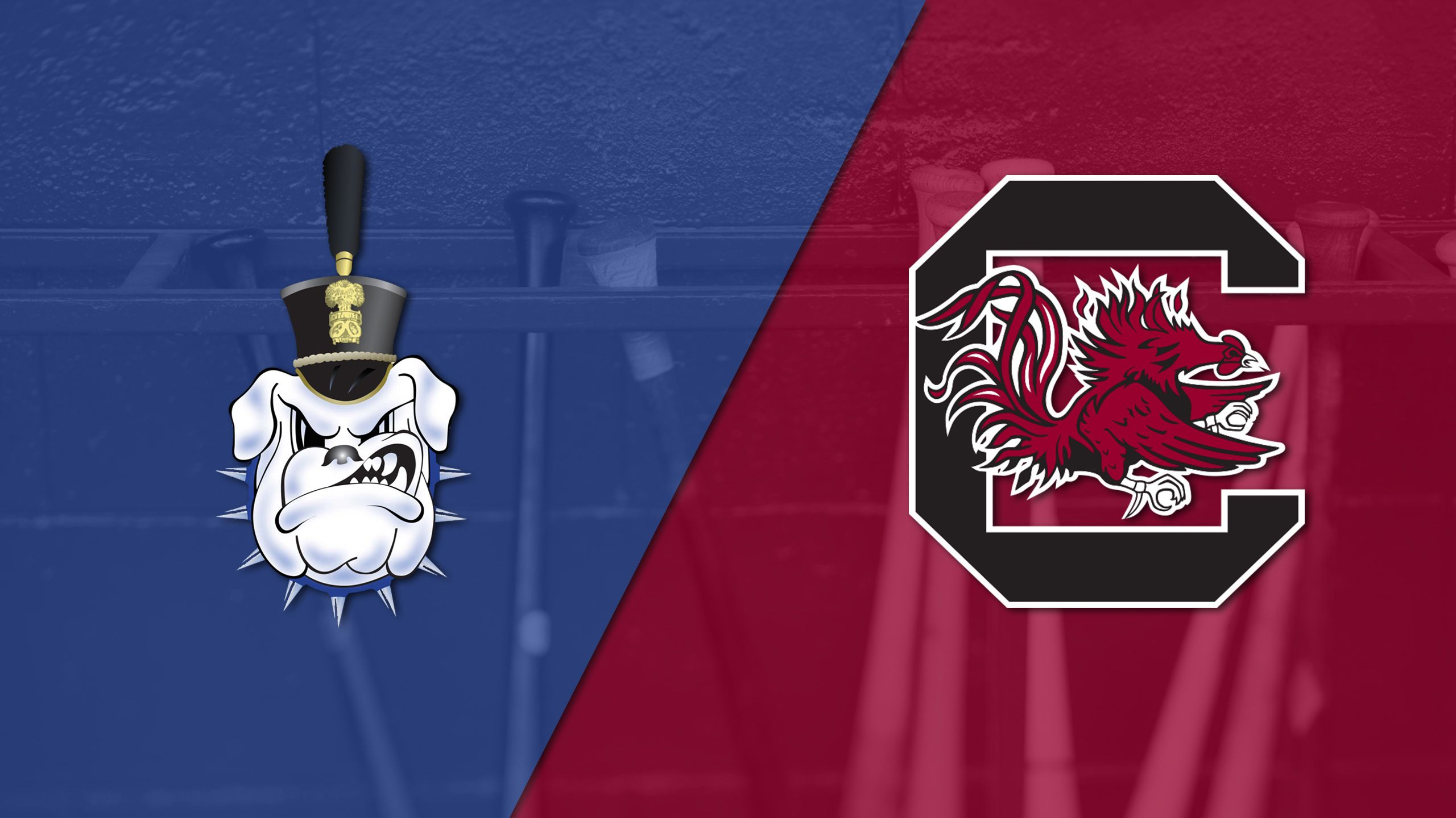 The Citadel vs. #13 South Carolina (Baseball)