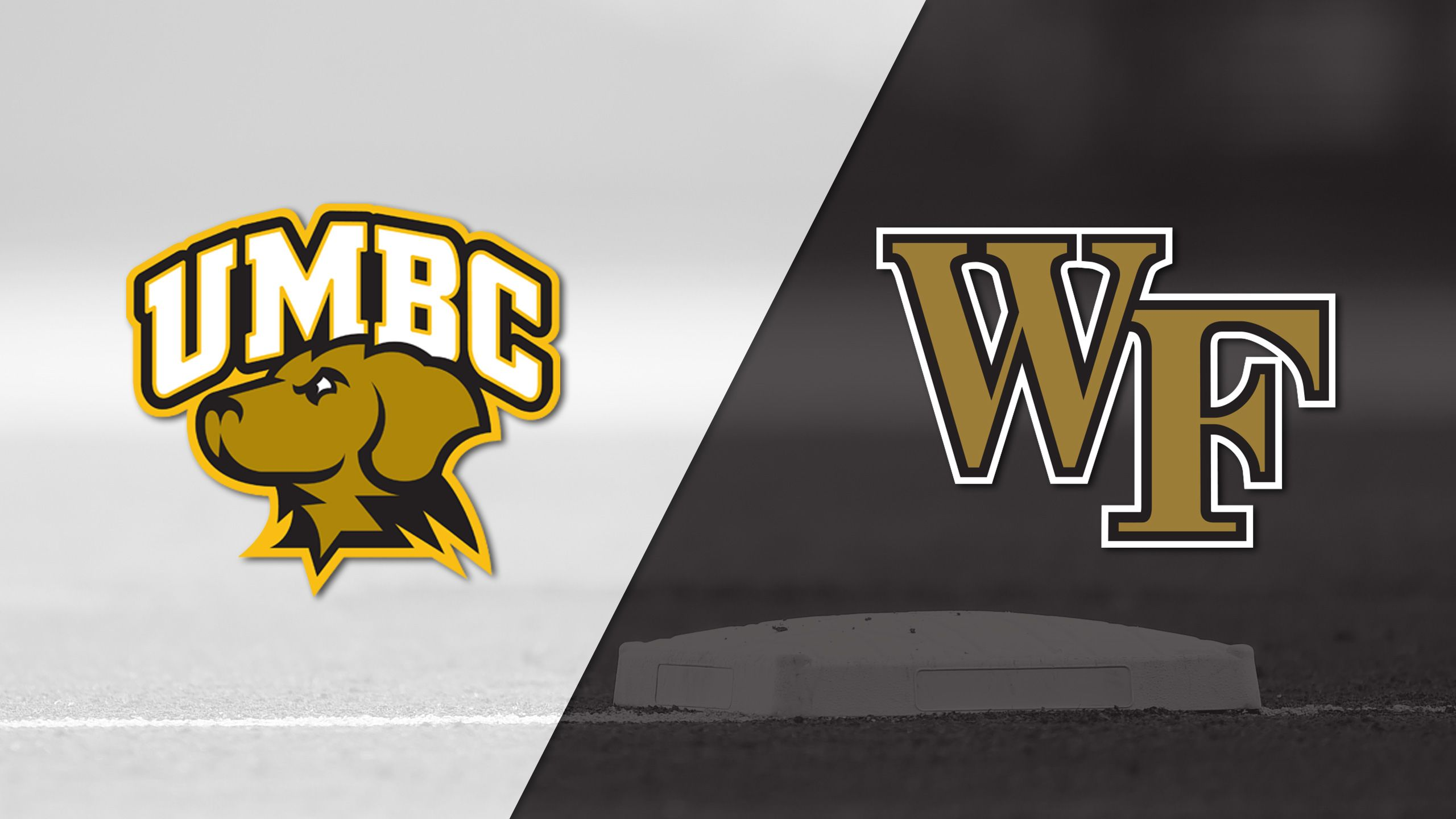 UMBC vs. Wake Forest (Site 15 / Game 2) (NCAA Baseball Championship)