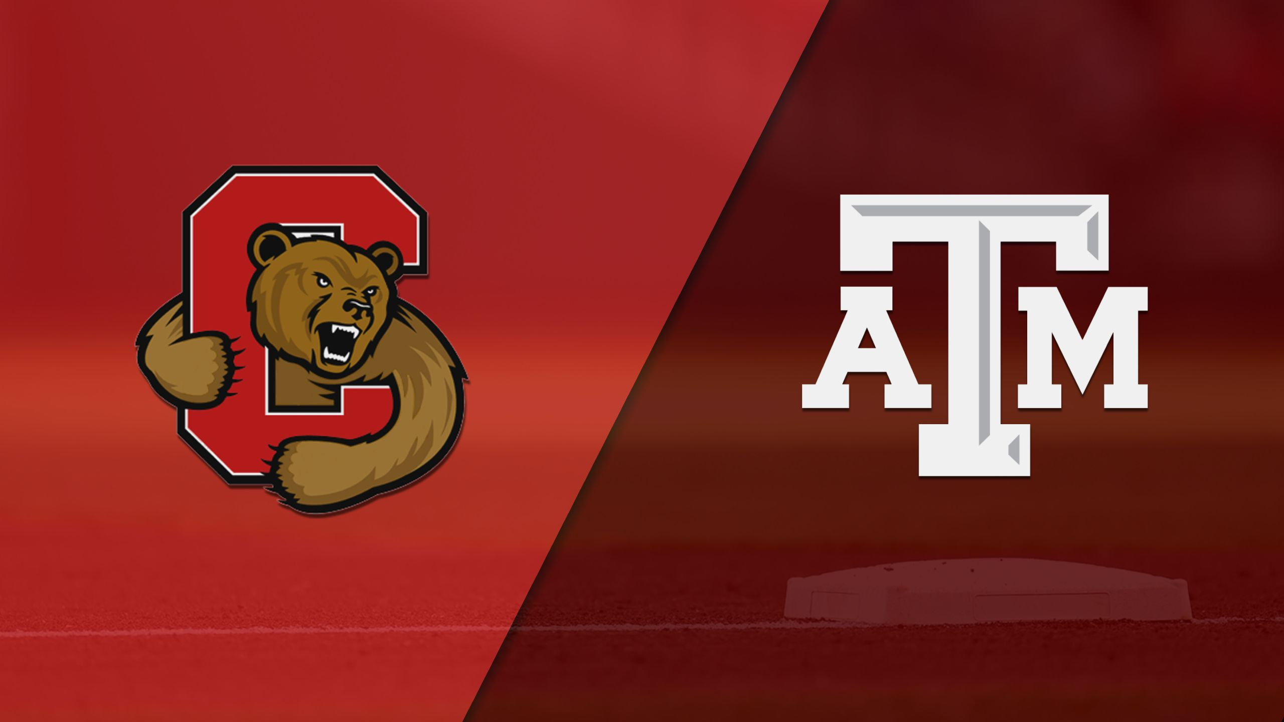 Cornell vs. #11 Texas A&M (Baseball)