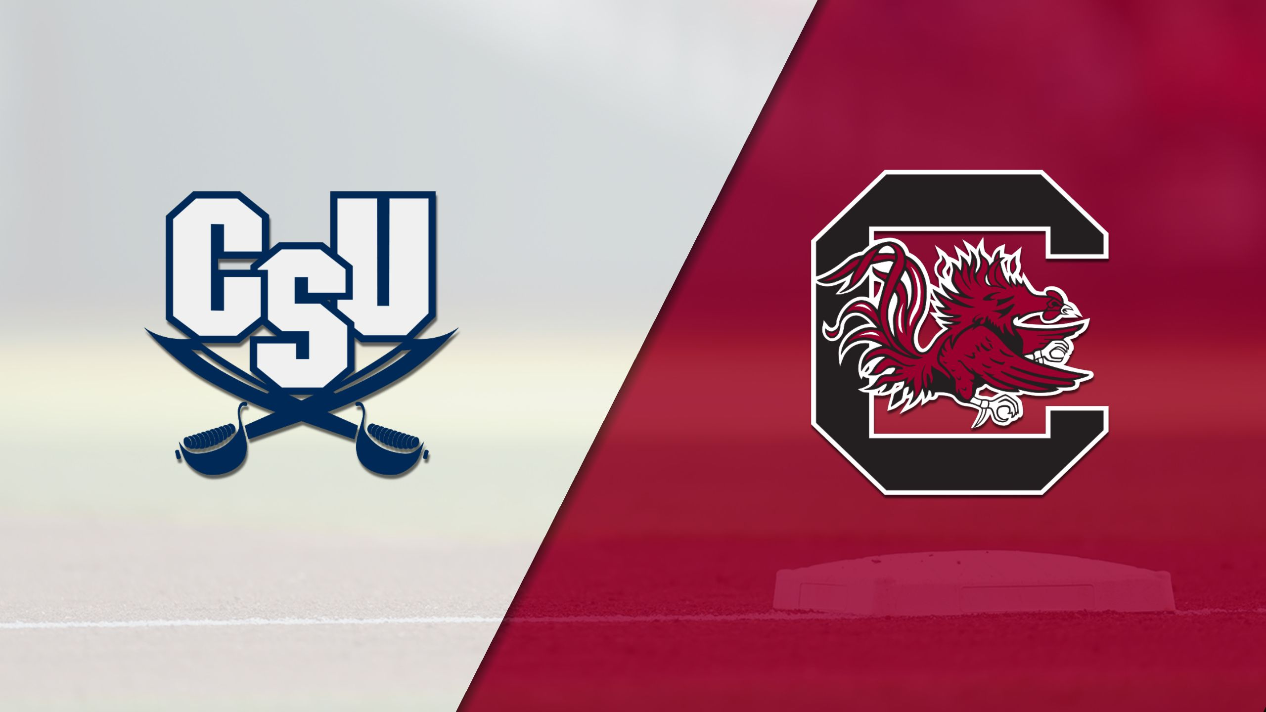 Charleston Southern vs. South Carolina (Baseball)