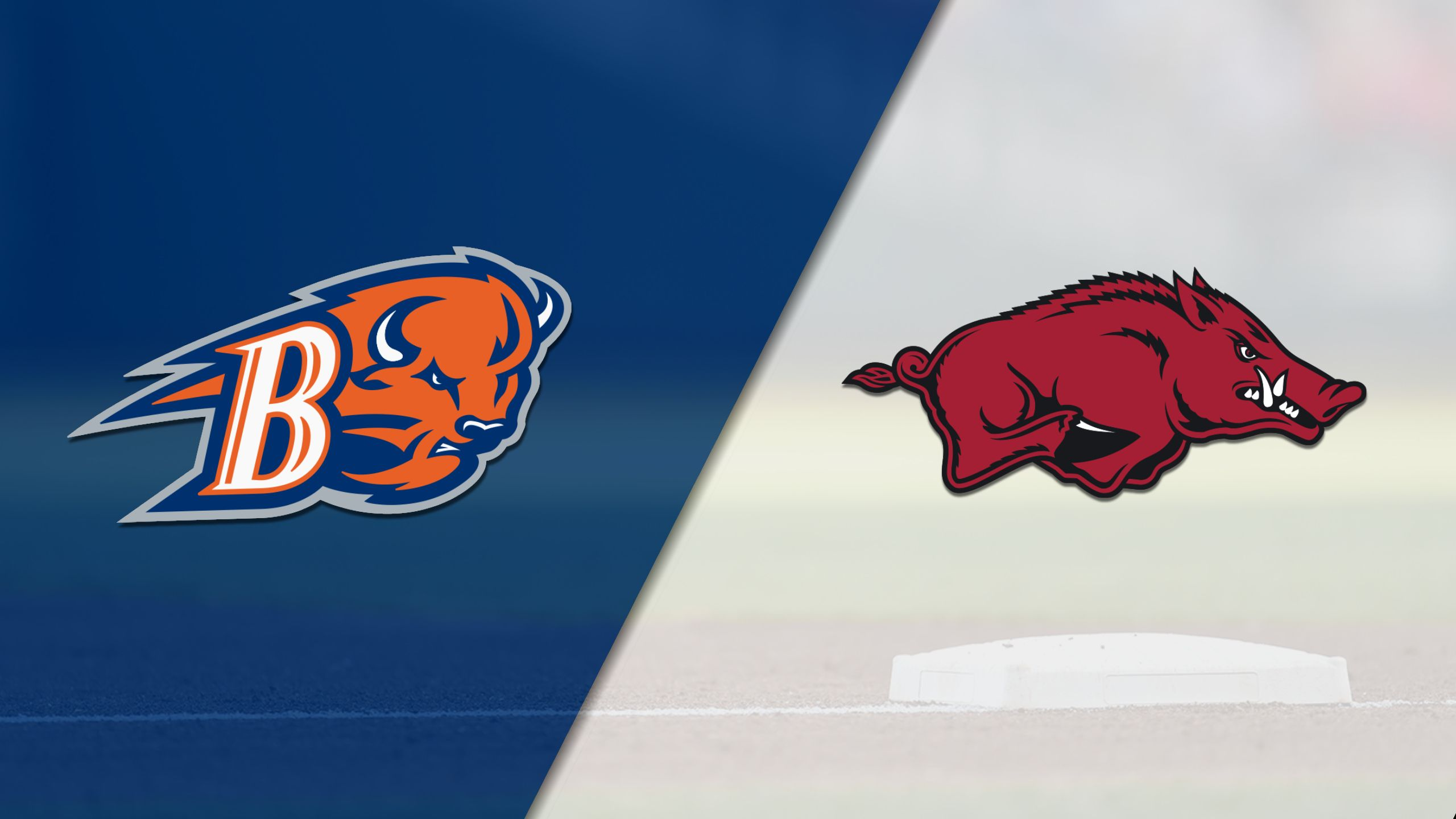 Bucknell vs. #6 Arkansas (Baseball)