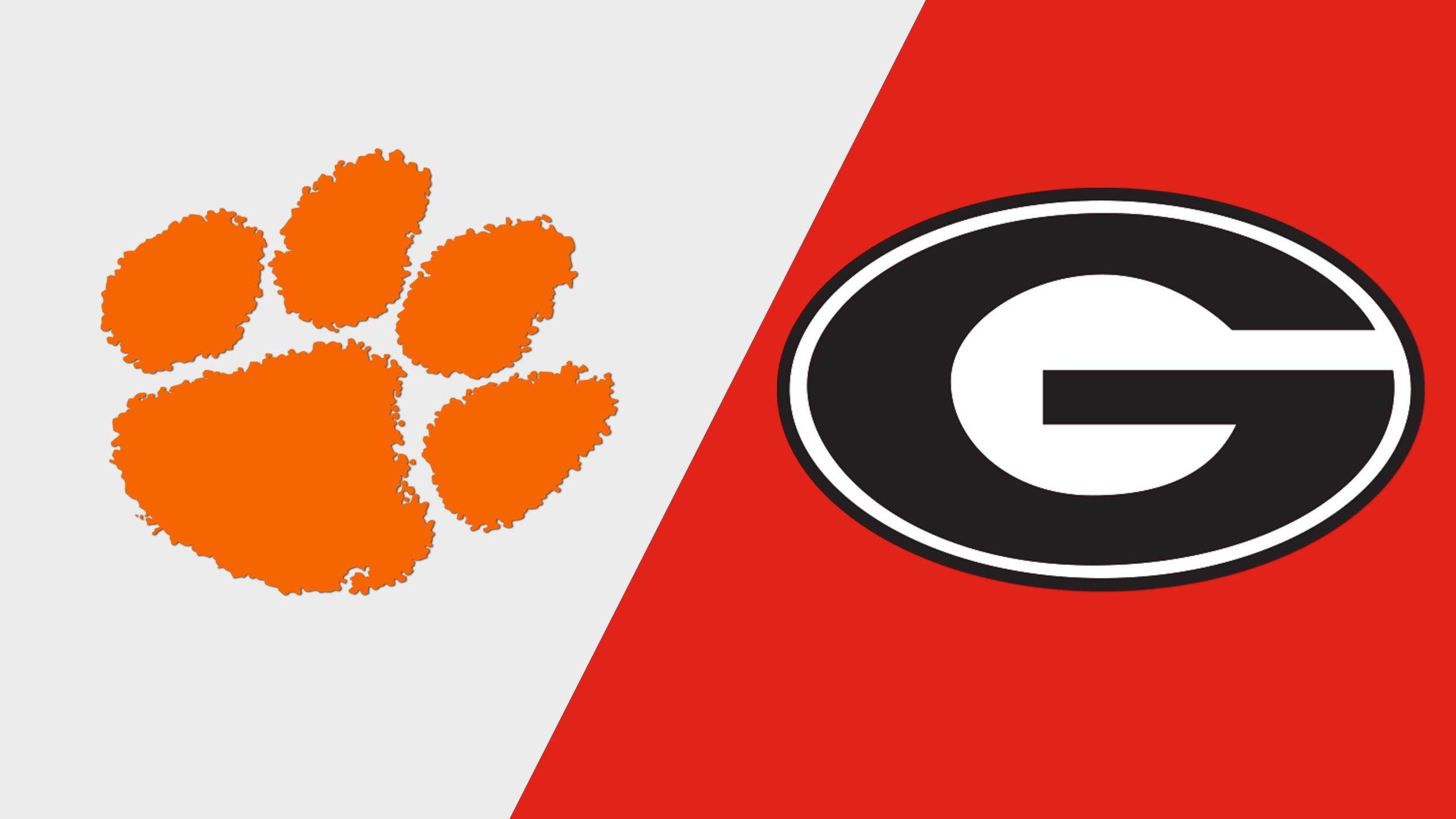 #15 Clemson vs. #19 Georgia (Baseball)