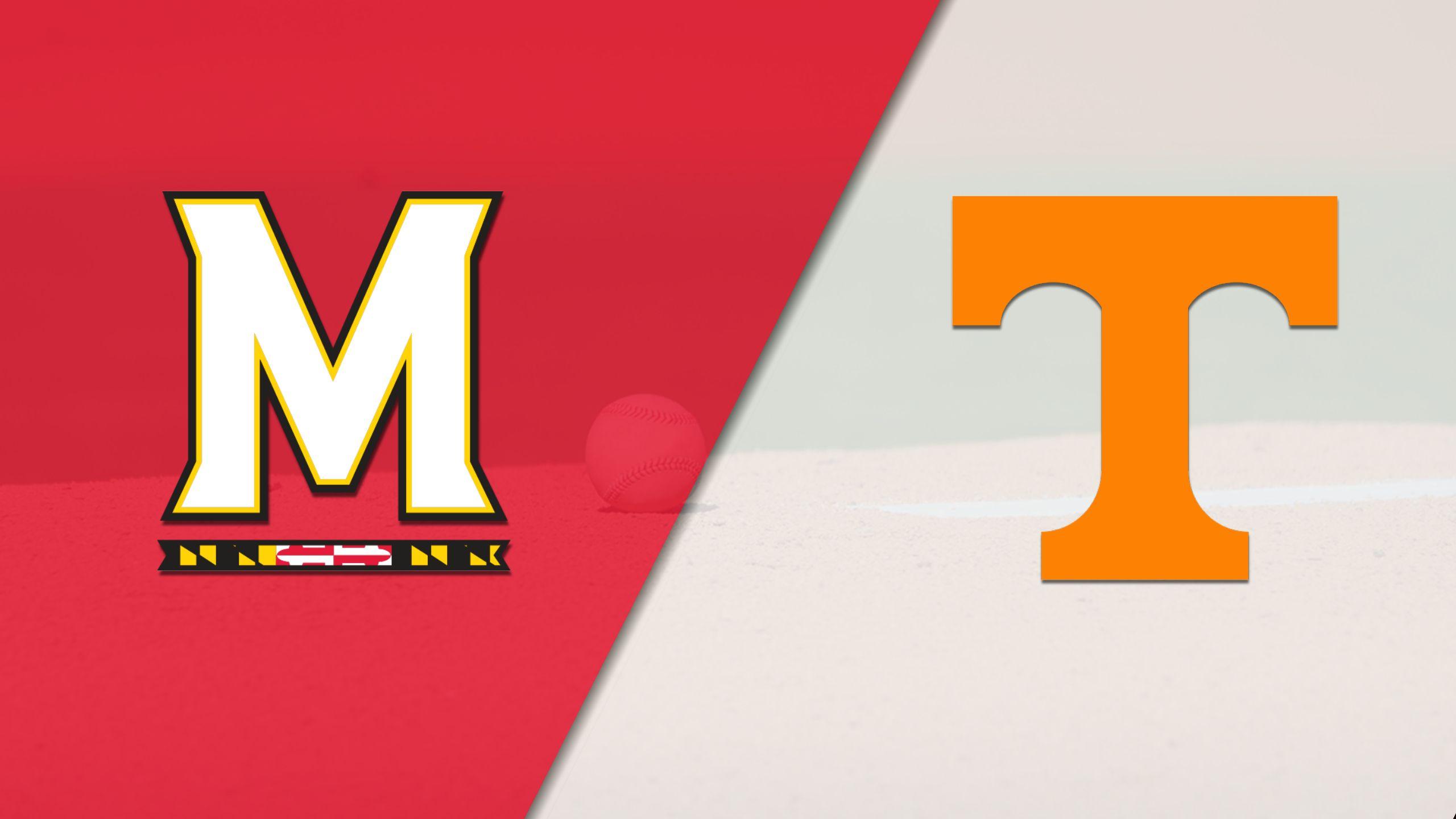 Maryland vs. Tennessee (Baseball)