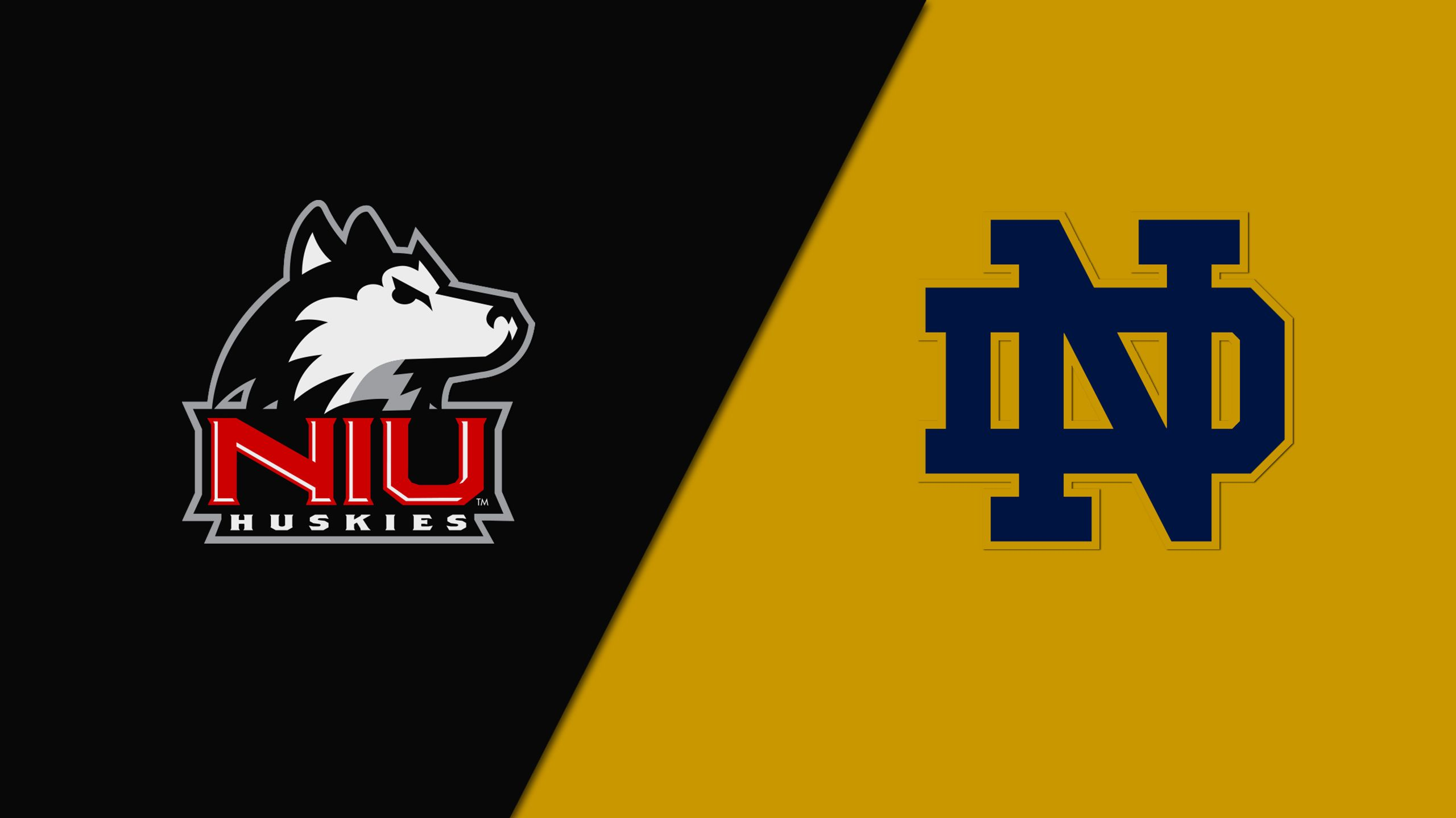 Northern Illinois vs. Notre Dame (Baseball)