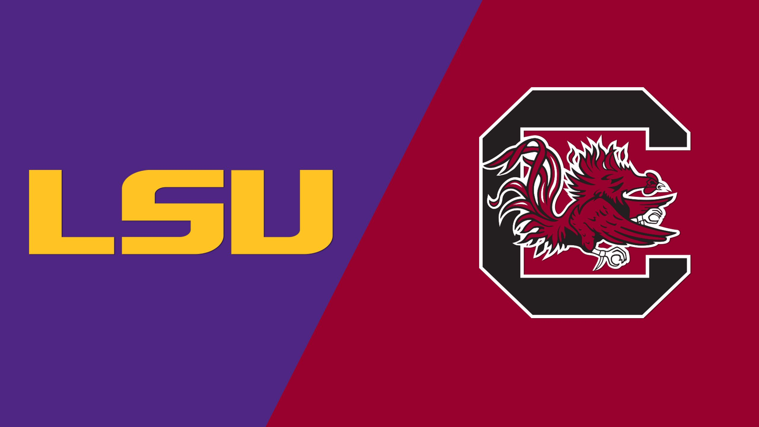 LSU vs. #24 South Carolina (Third Round) (SEC Baseball Tournament)