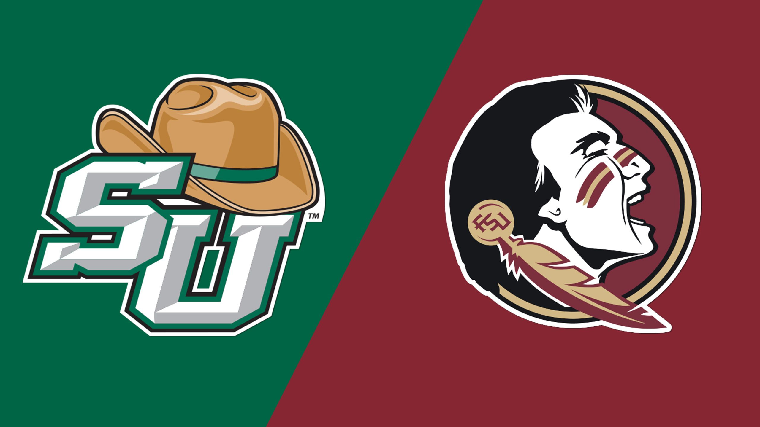 Stetson vs. #18 Florida State (Baseball)