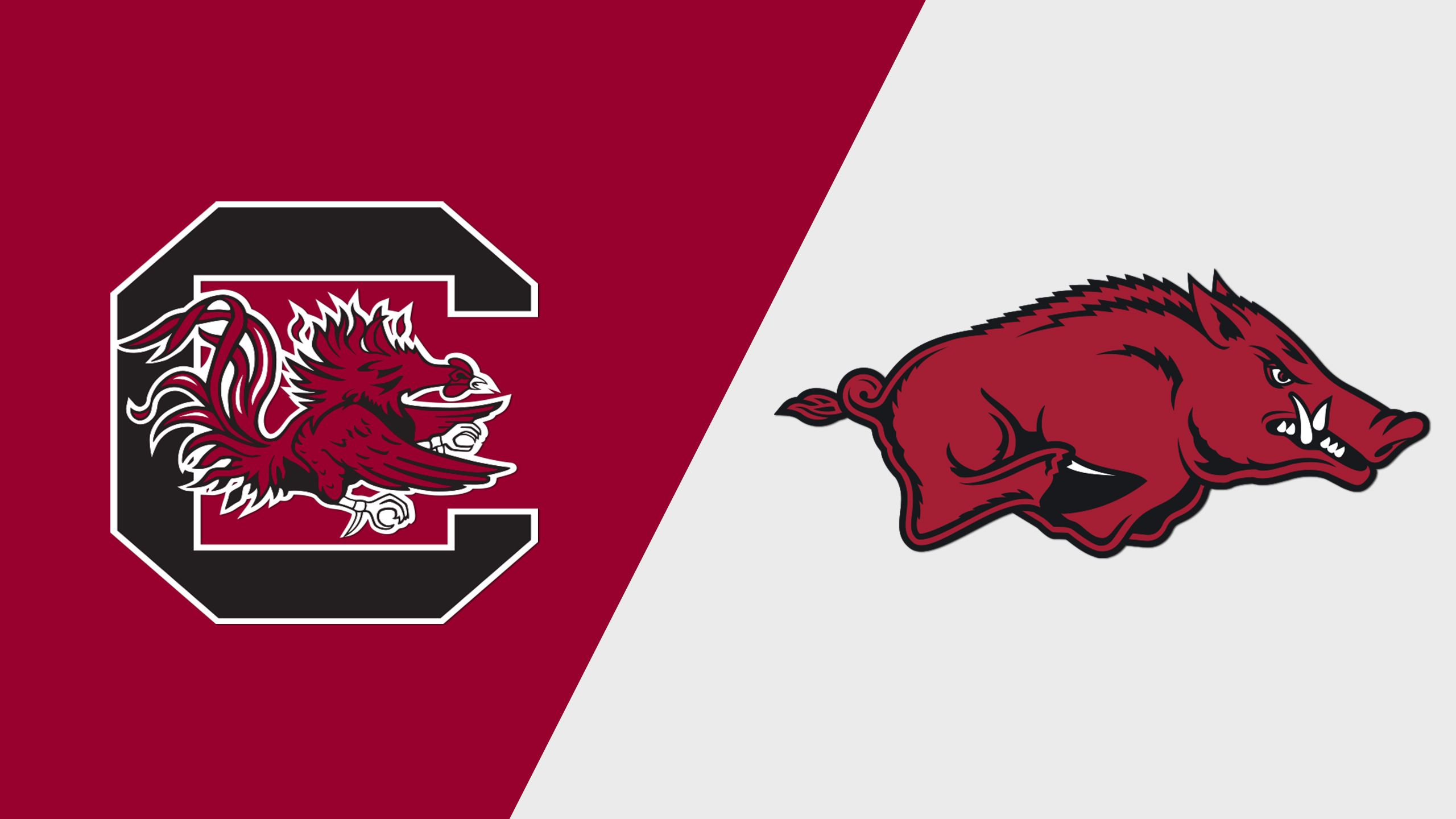 South Carolina vs. Arkansas (Second Round) (SEC Baseball Tournament)