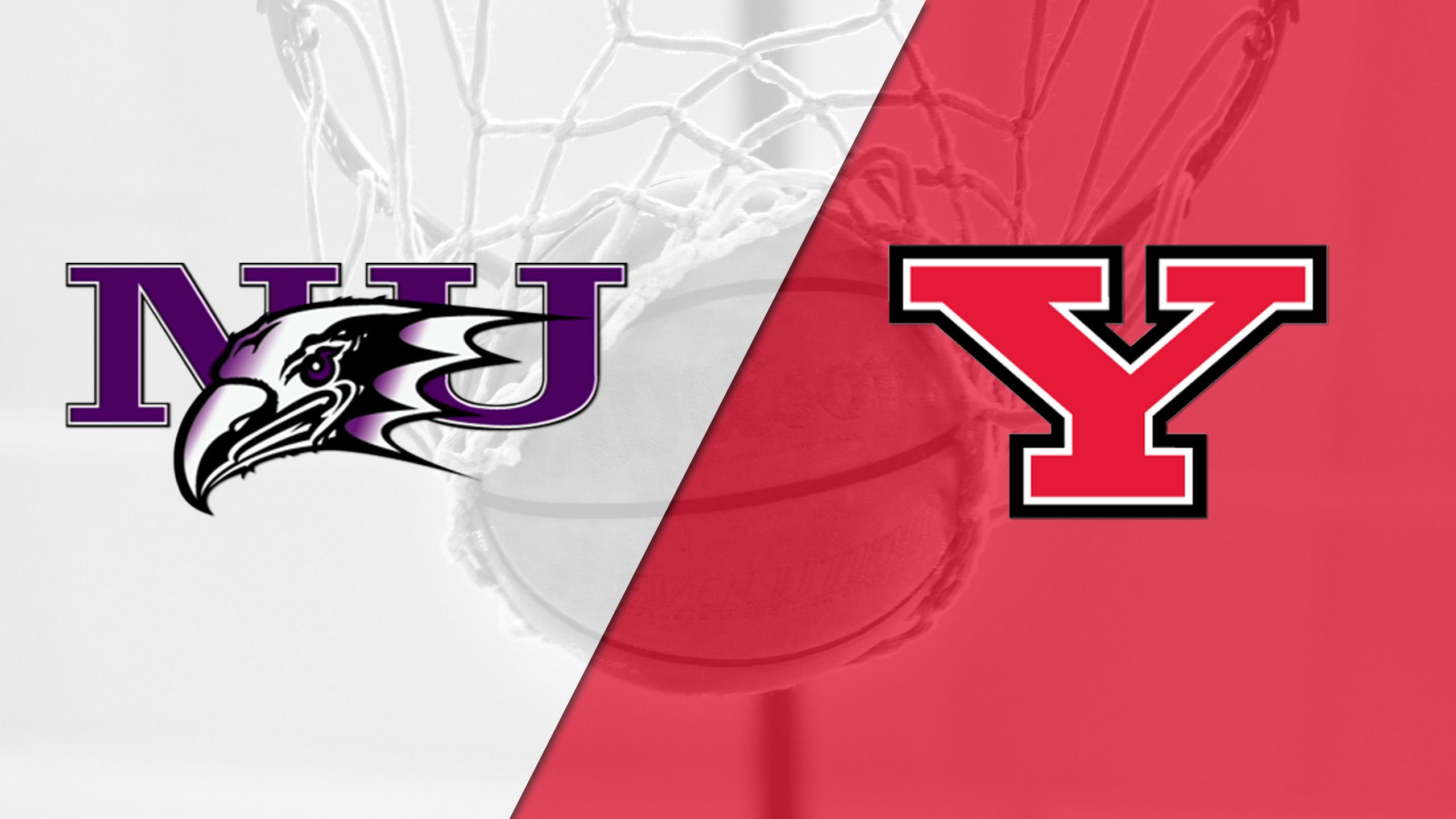 Niagara vs. Youngstown State (M Basketball)