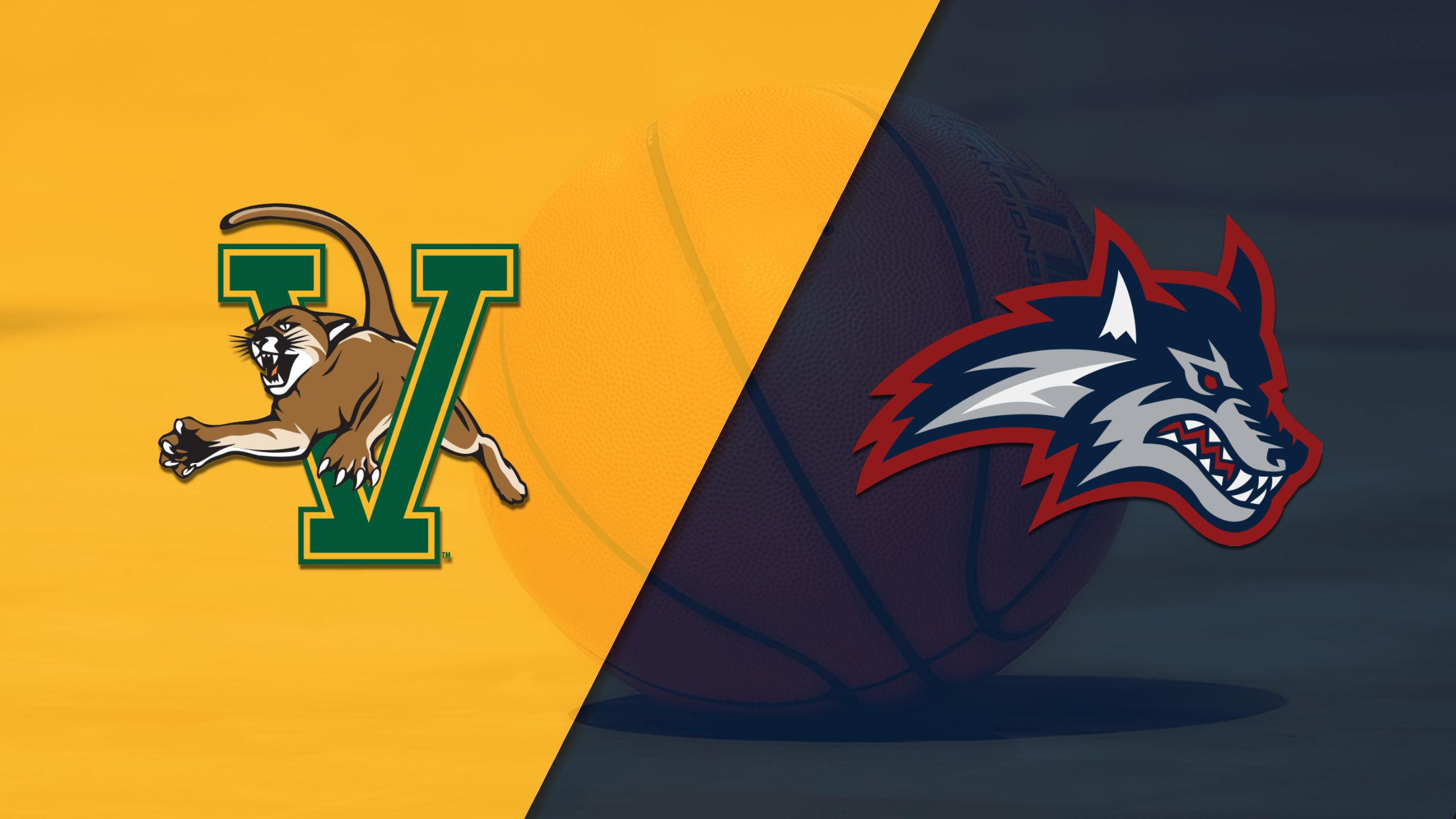 Vermont vs. Stony Brook (M Basketball)