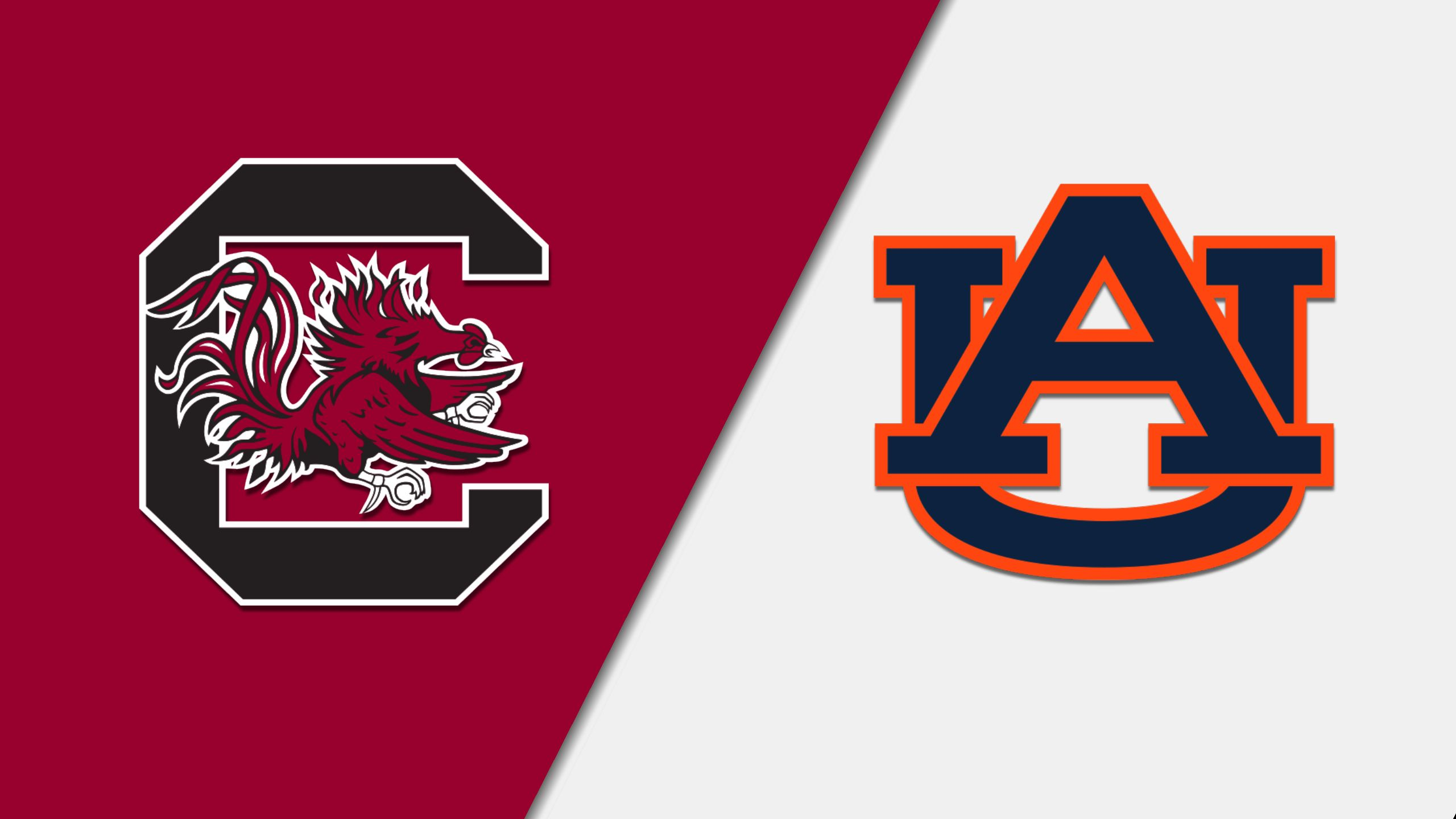 South Carolina vs. #14 Auburn (M Basketball)