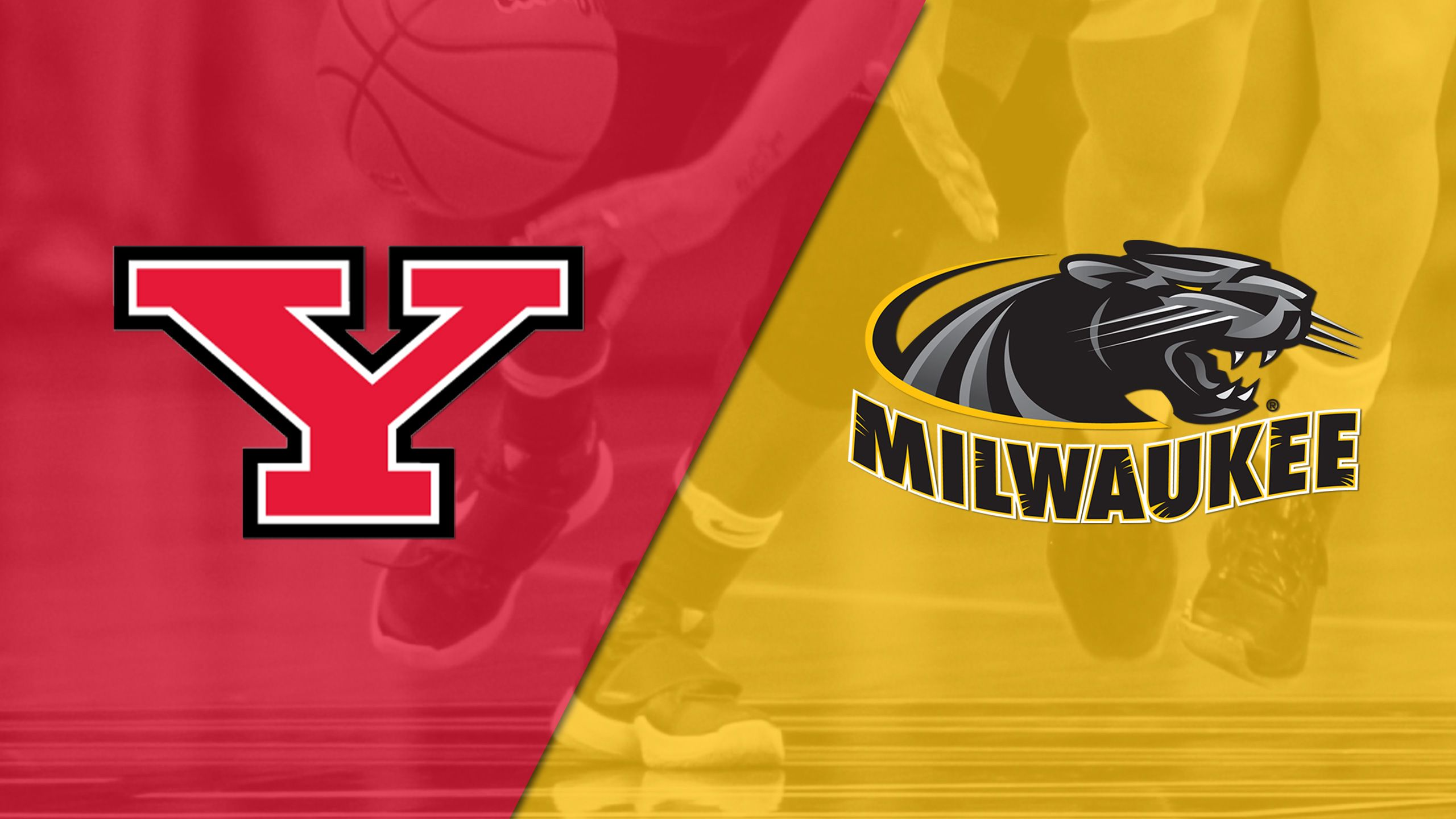 Youngstown State vs. Milwaukee (W Basketball)