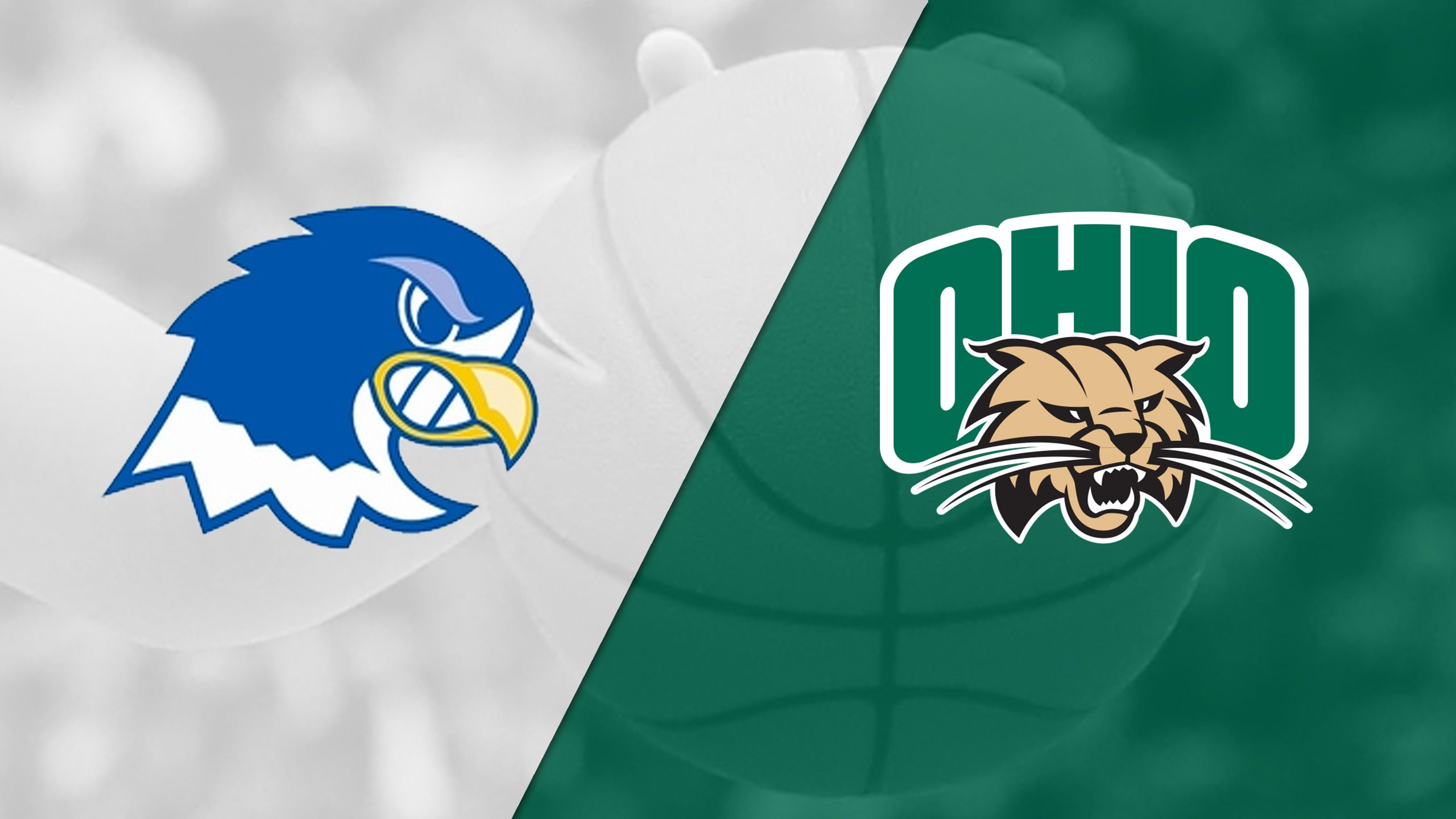 Notre Dame College vs. Ohio (W Basketball)