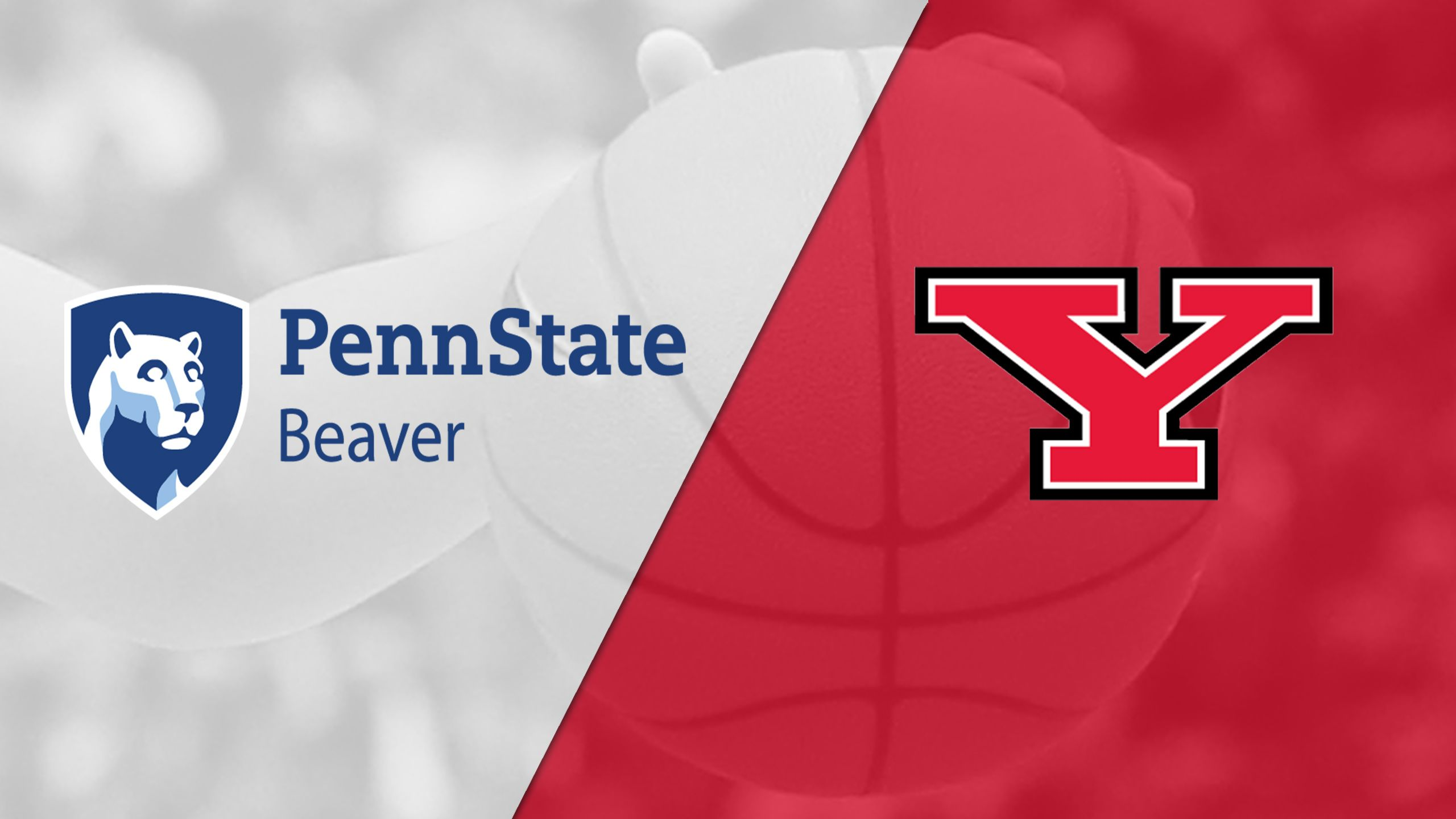 Penn State-Beaver vs. Youngstown State (W Basketball)
