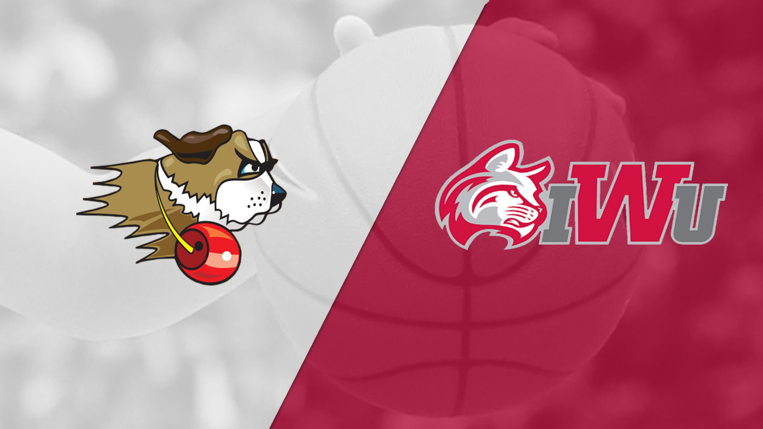 University of St. Francis vs. Indiana Wesleyan (First Round) (Crossroads League Women's Tournament)