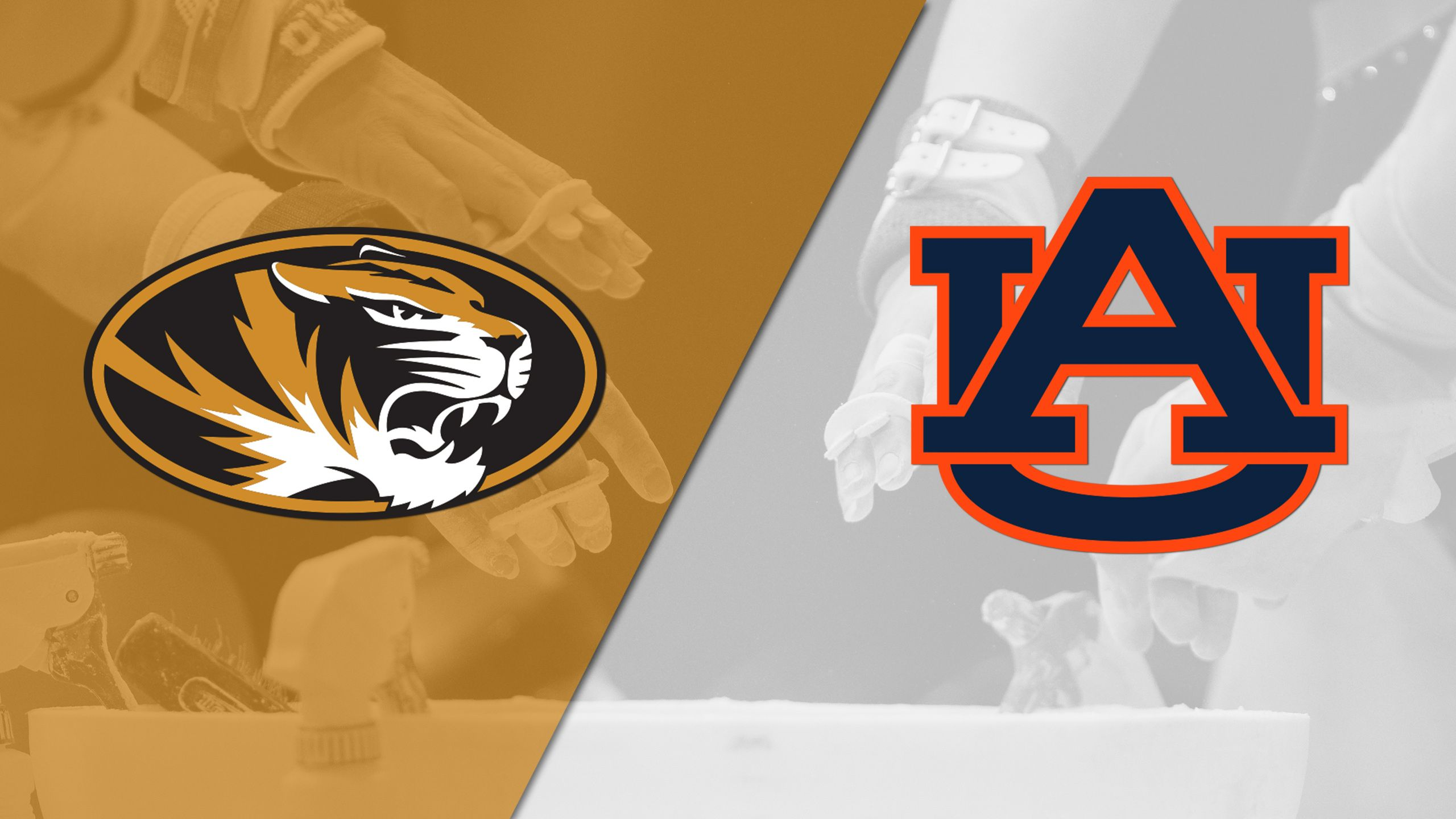 Missouri vs. Auburn (W Gymnastics)