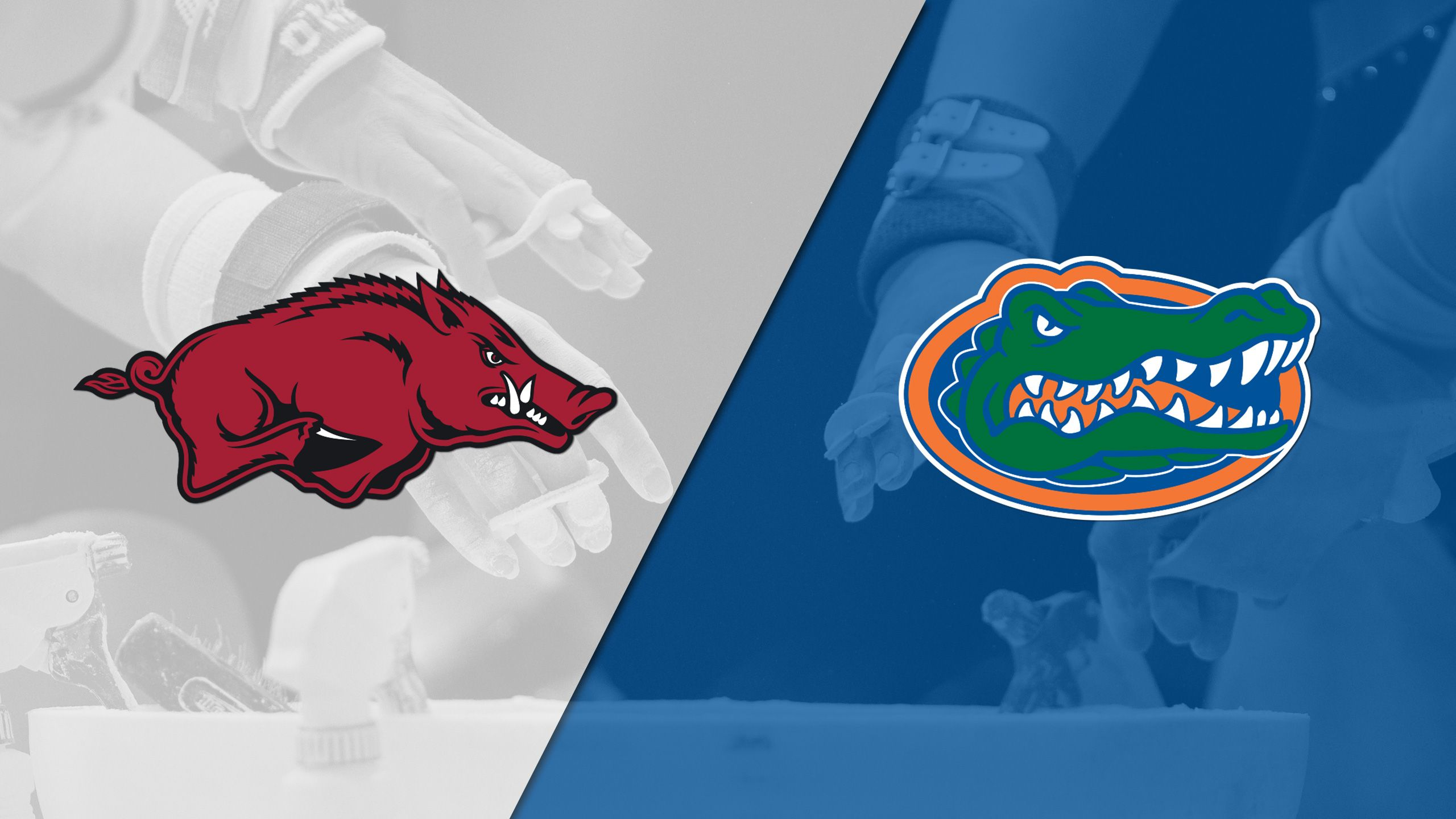 Arkansas vs. Florida (W Gymnastics)