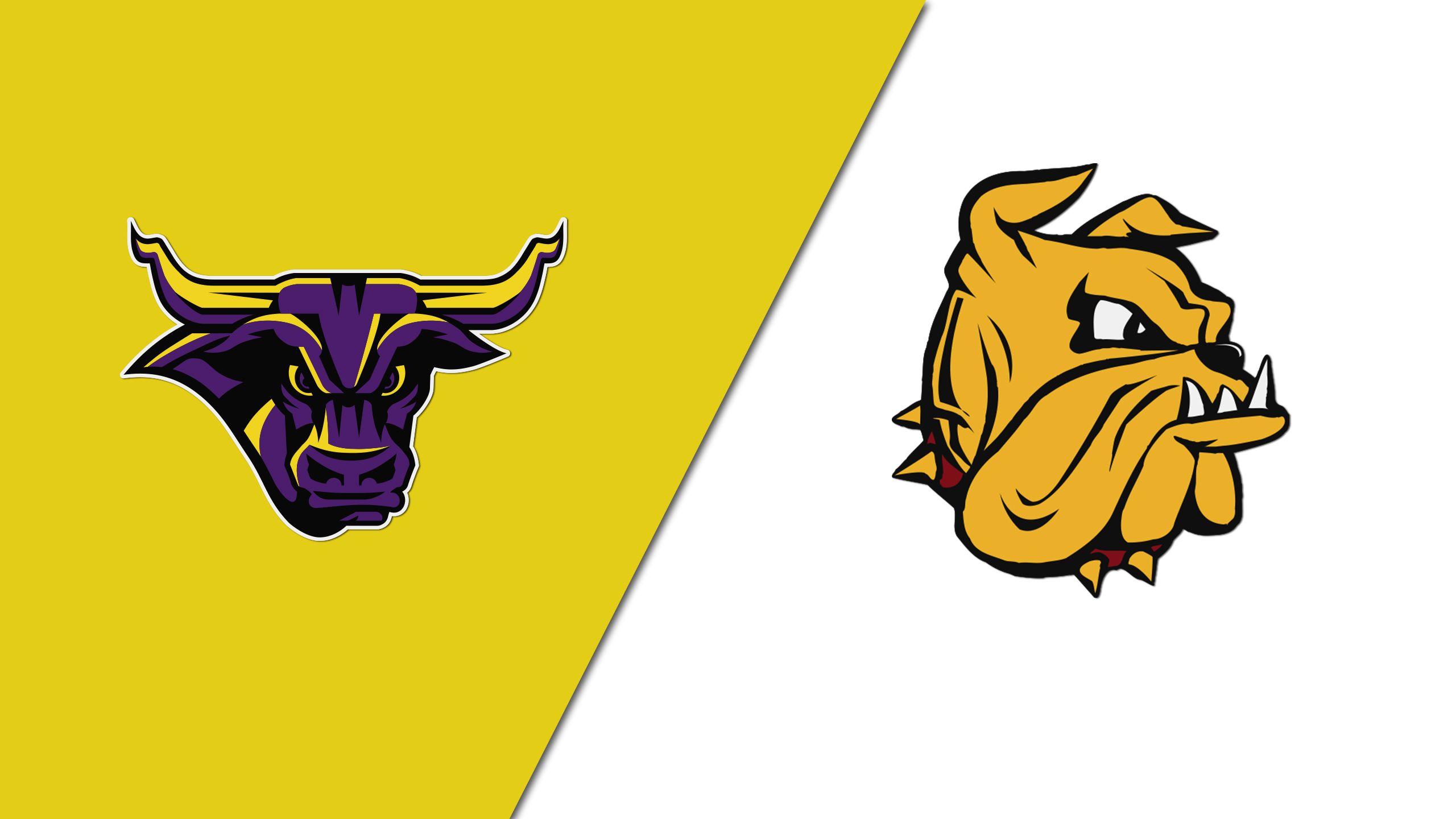 #2 Minnesota State vs. #3 Minnesota Duluth (West Regional Semifinal #2) (NCAA Men's Hockey Championship)