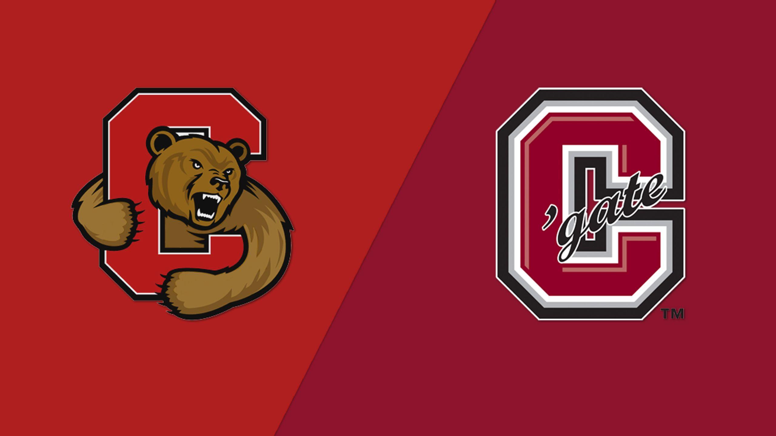 #6 Cornell vs. #4 Colgate (Semifinal #2) (ECAC Women's Hockey Championship)