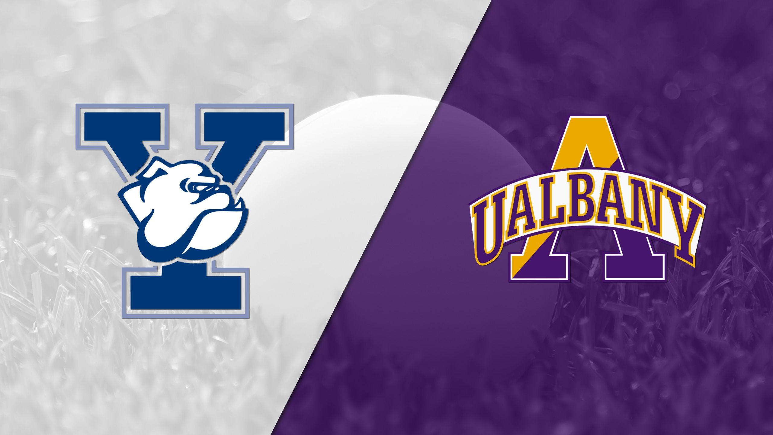 #11 Yale vs. #5 Albany (M Lacrosse)