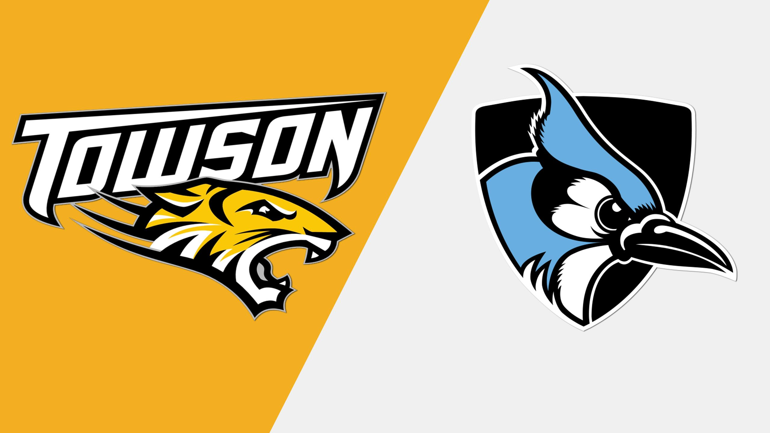 Towson vs. Johns Hopkins (W Lacrosse)