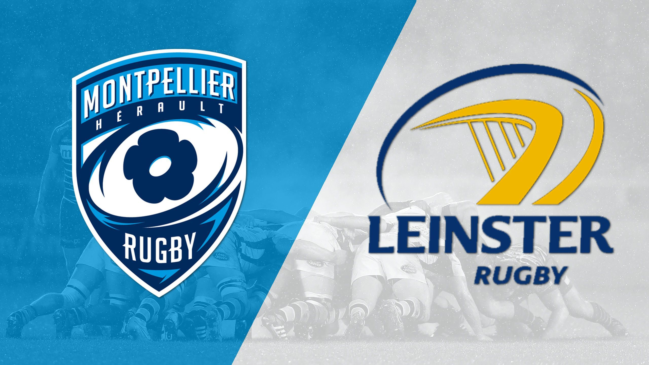 Montpellier vs. Leinster (Round 6) (European Champions Cup)