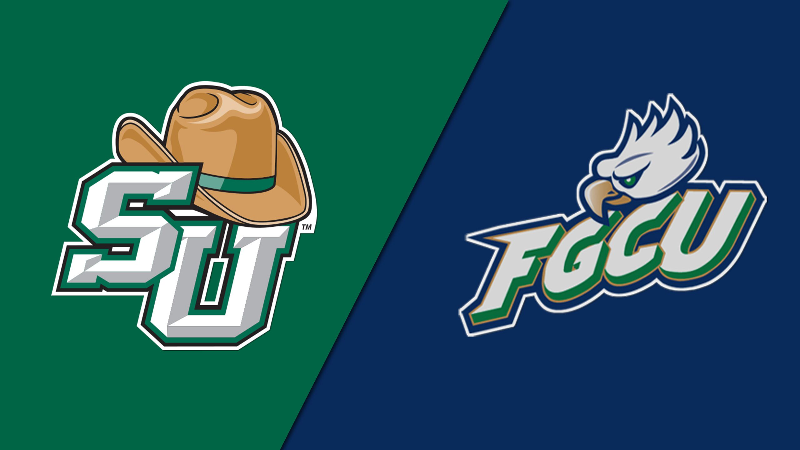 Stetson vs. Florida Gulf Coast (Softball)