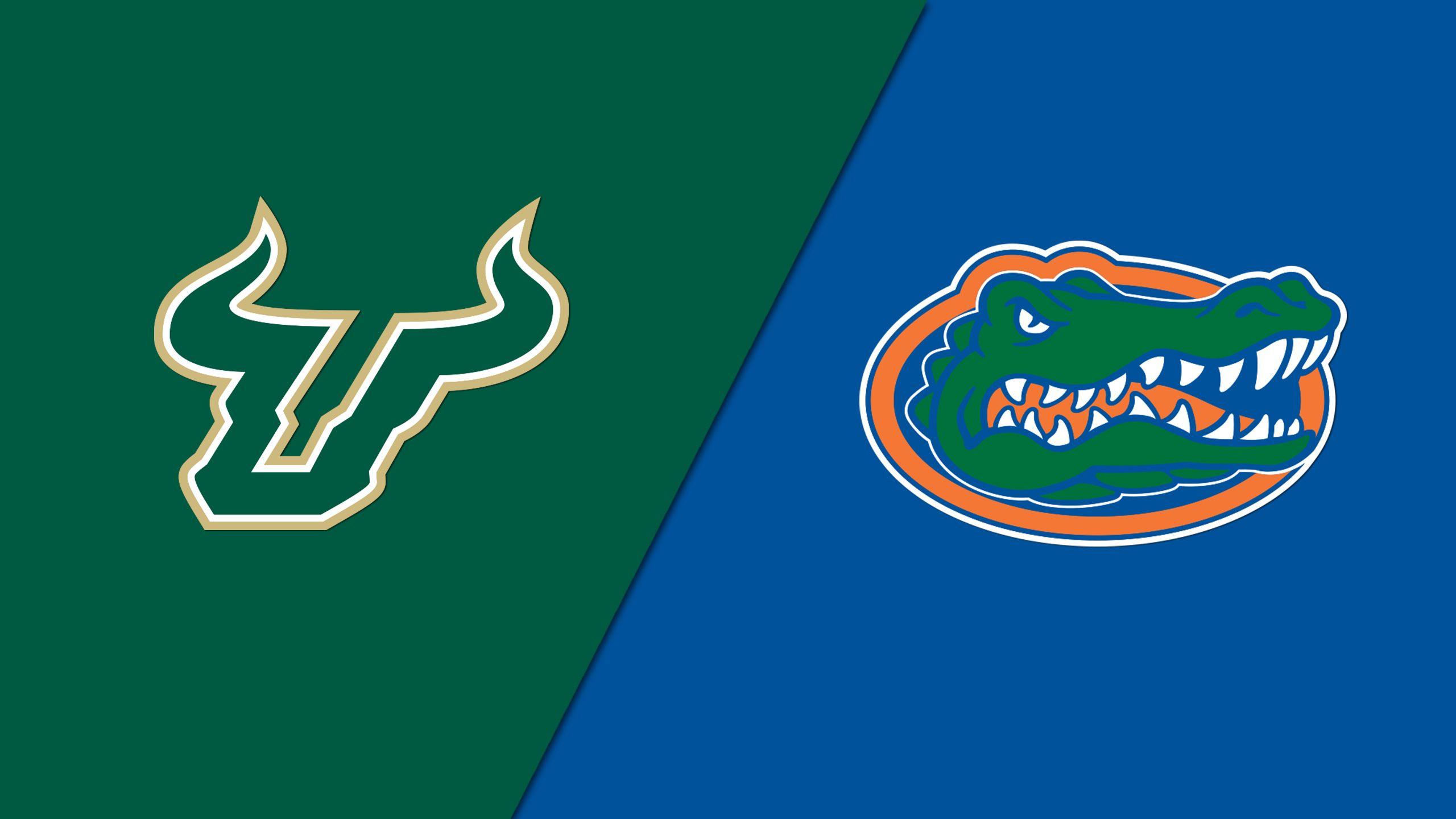 South Florida vs. #6 Florida (Softball)