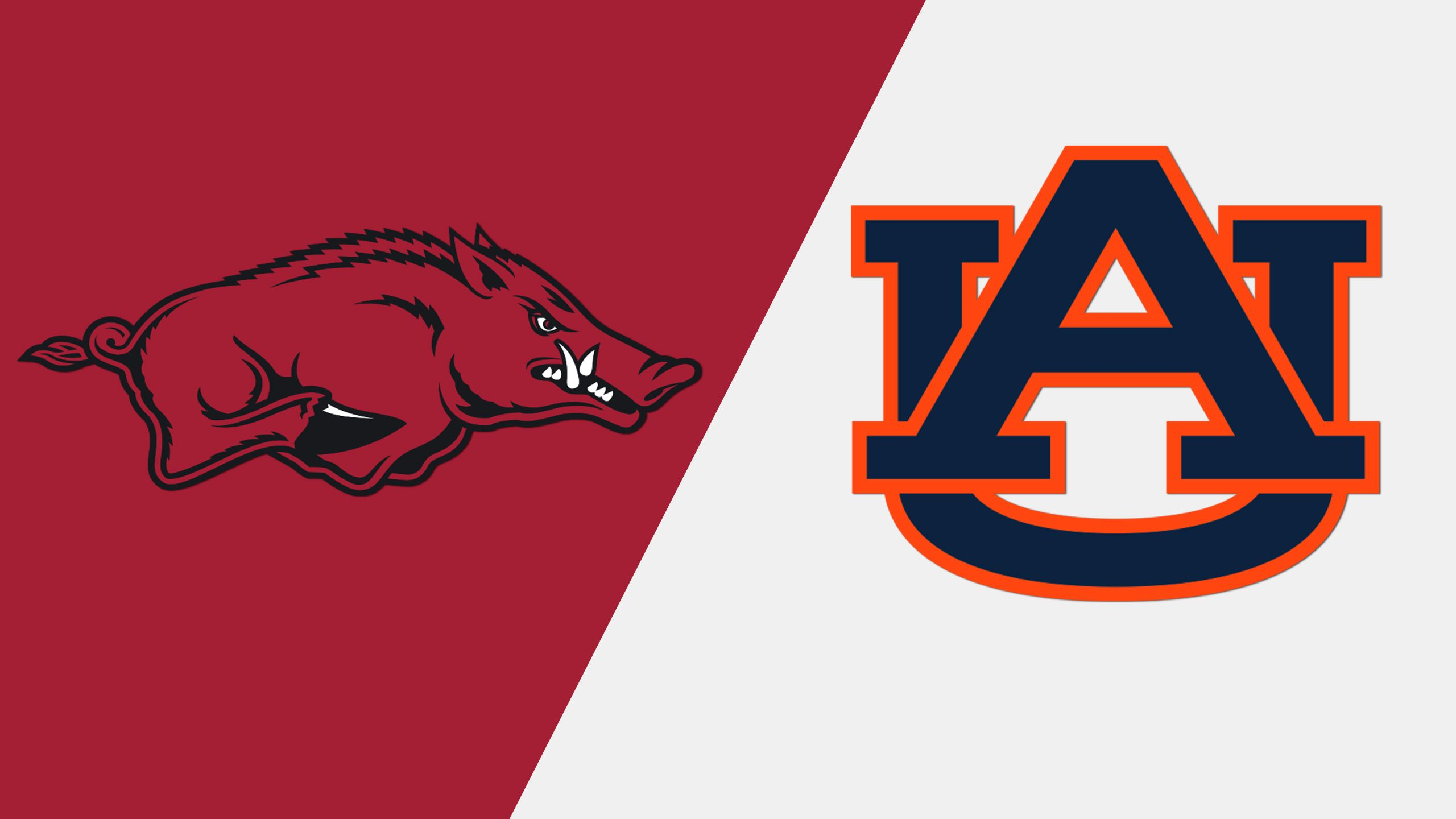 #16 Arkansas vs. #13 Auburn (Softball)