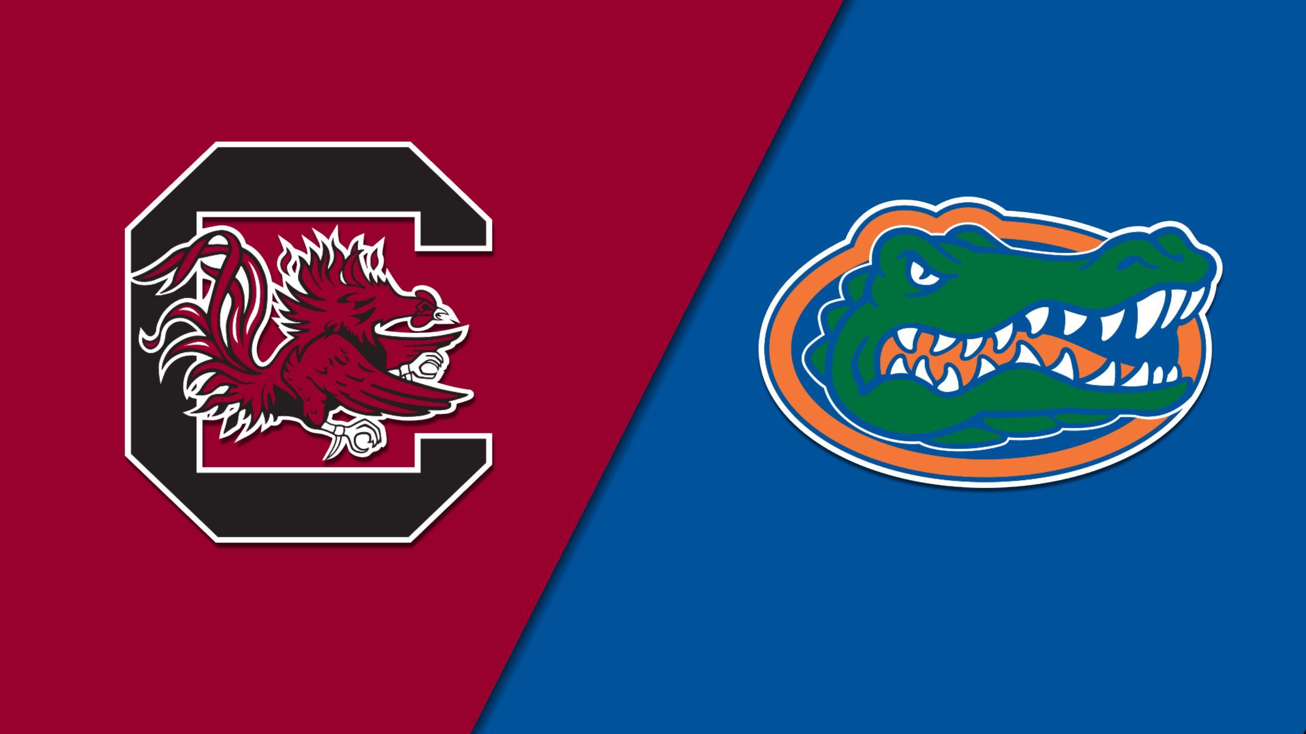 #12 South Carolina vs. #7 Florida (Softball)