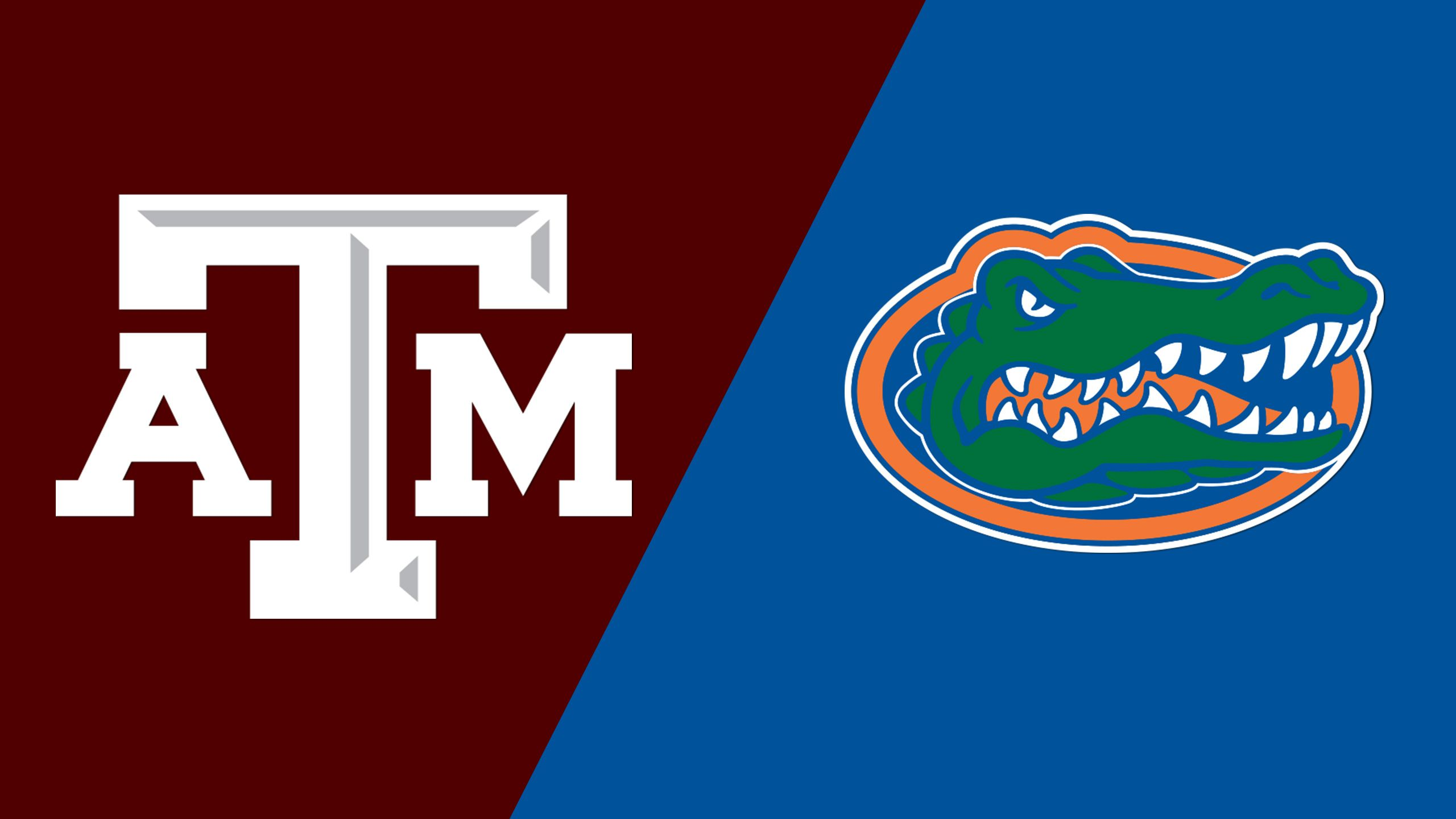 #15 Texas A&M vs. #2 Florida (Site 1 / Game 1) (NCAA Softball Championship) (re-air)
