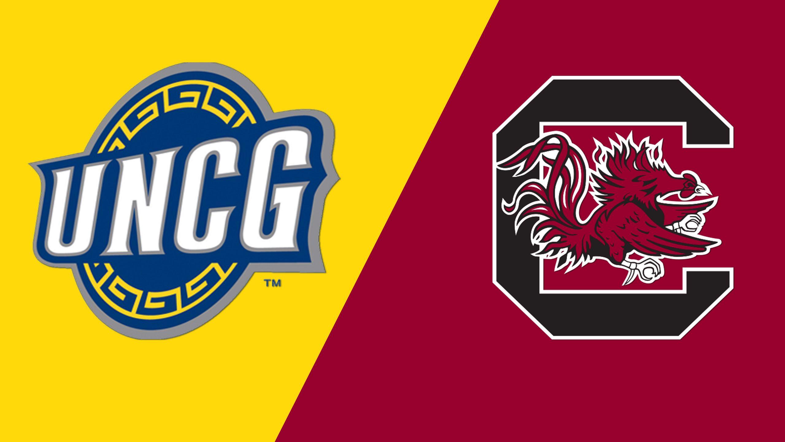 UNC Greensboro vs. #9 South Carolina (Site 10 / Game 2) (NCAA Softball Championship)