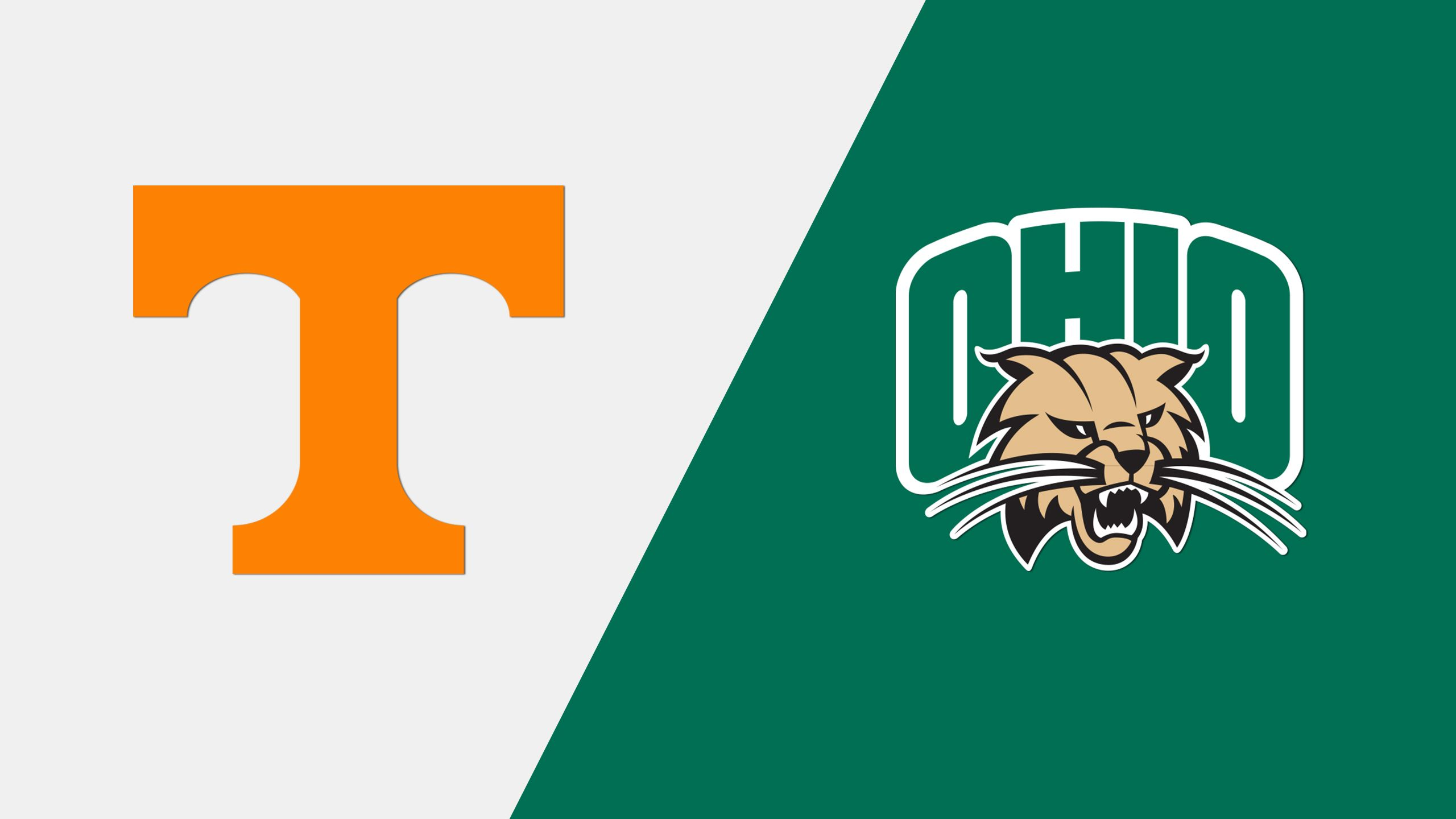 #10 Tennessee vs. Ohio (Site 8 / Game 6) (NCAA Softball Championship)