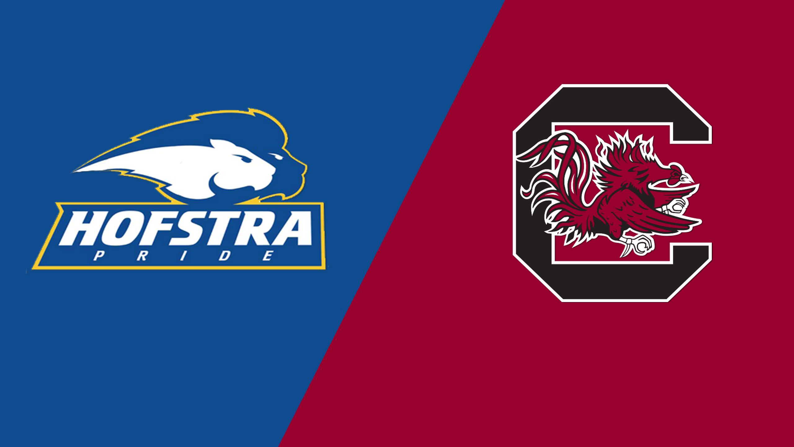 Hofstra vs. #9 South Carolina (Site 10 / Game 5) (NCAA Softball Championship)