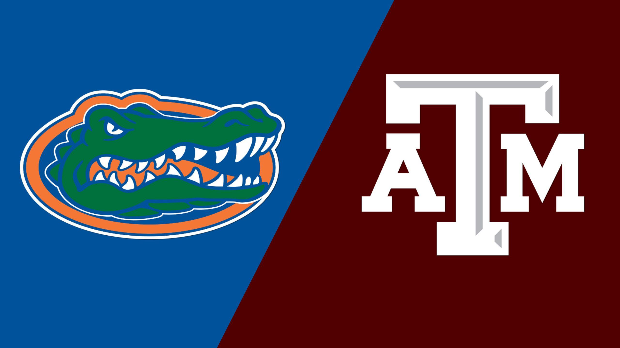 #2 Florida vs. #15 Texas A&M (Site 1 / Game 2) (NCAA Softball Championship)