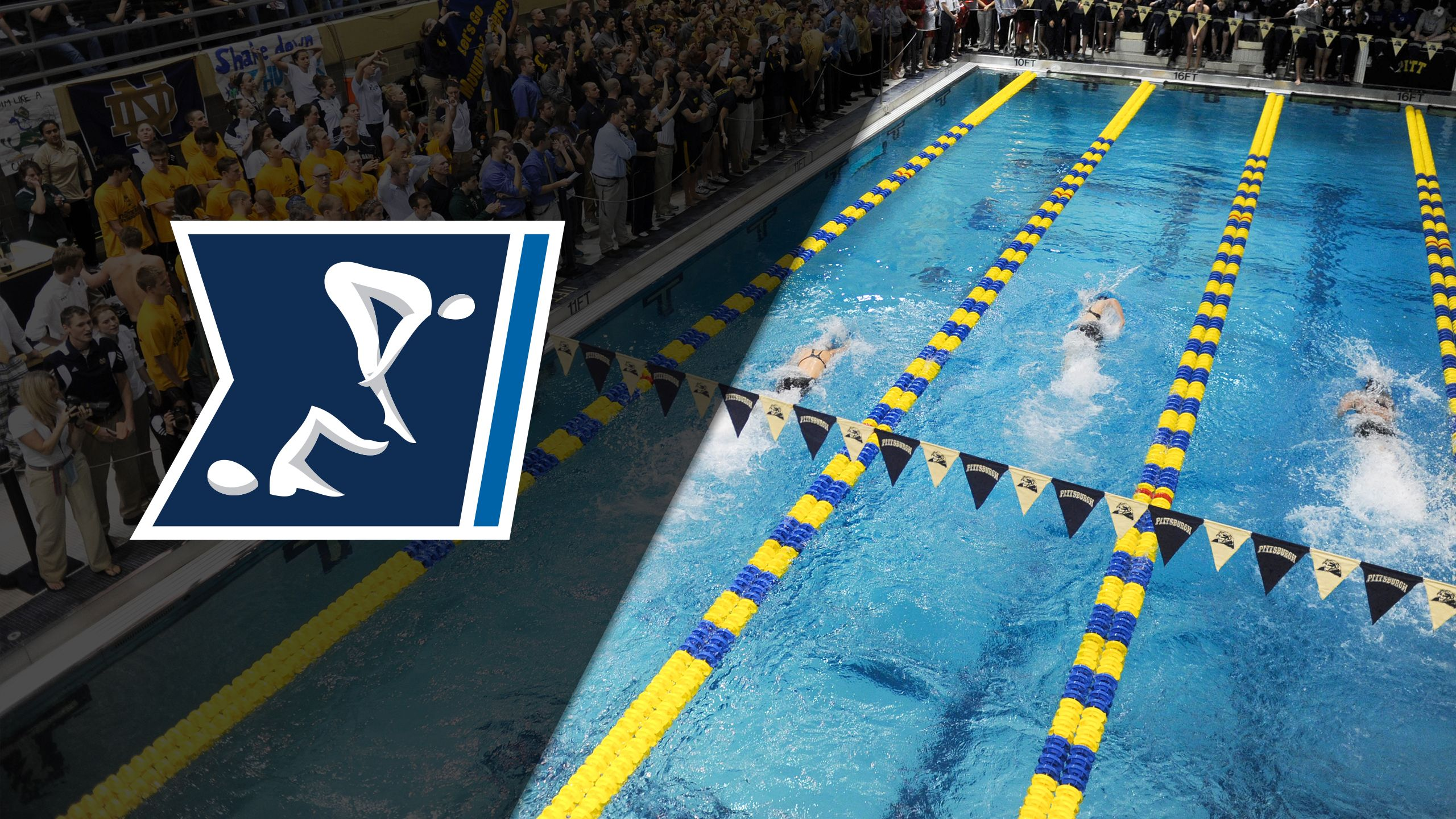Navy, Penn State and North Carolina (Swimming & Diving)
