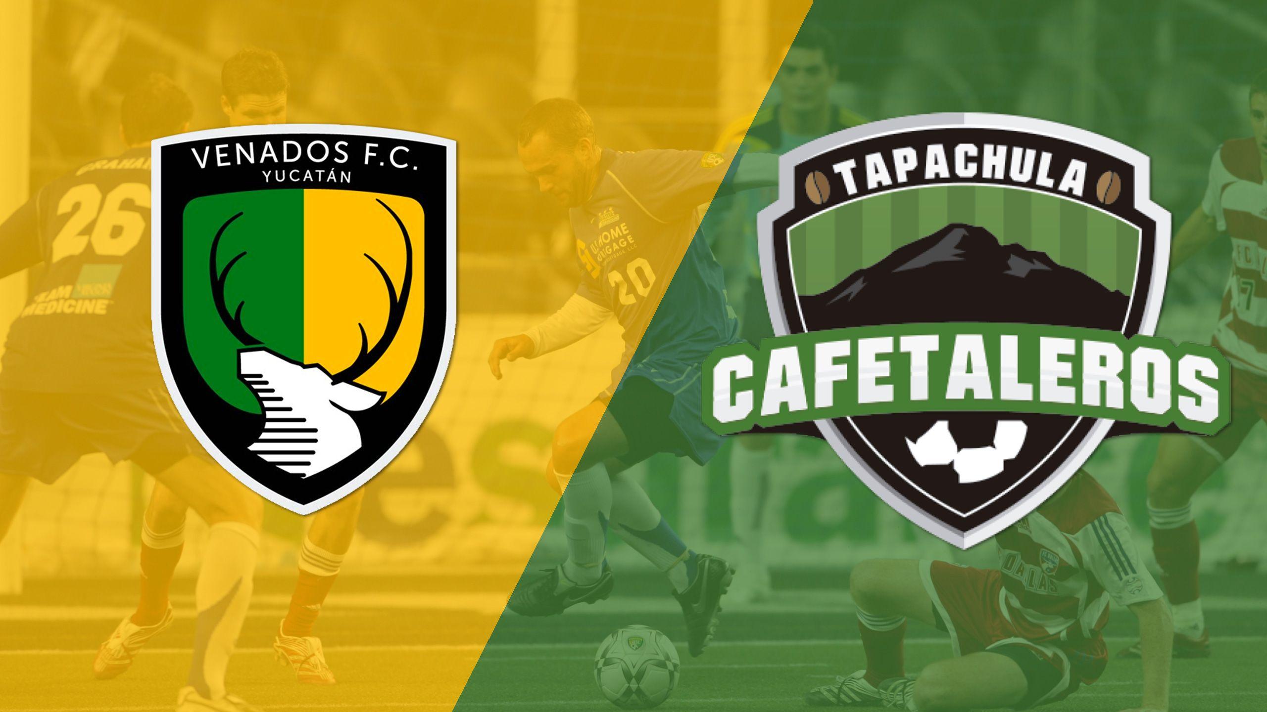 In Spanish - Venados FC vs. Cafetaleros de Tapachula (Copa Mexico)