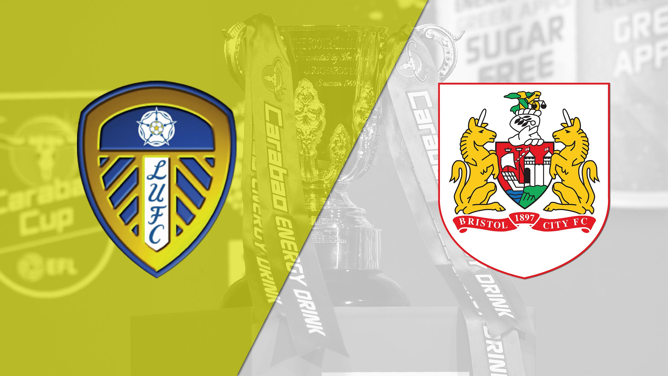 Leeds United vs. Bristol City (English League Championship)