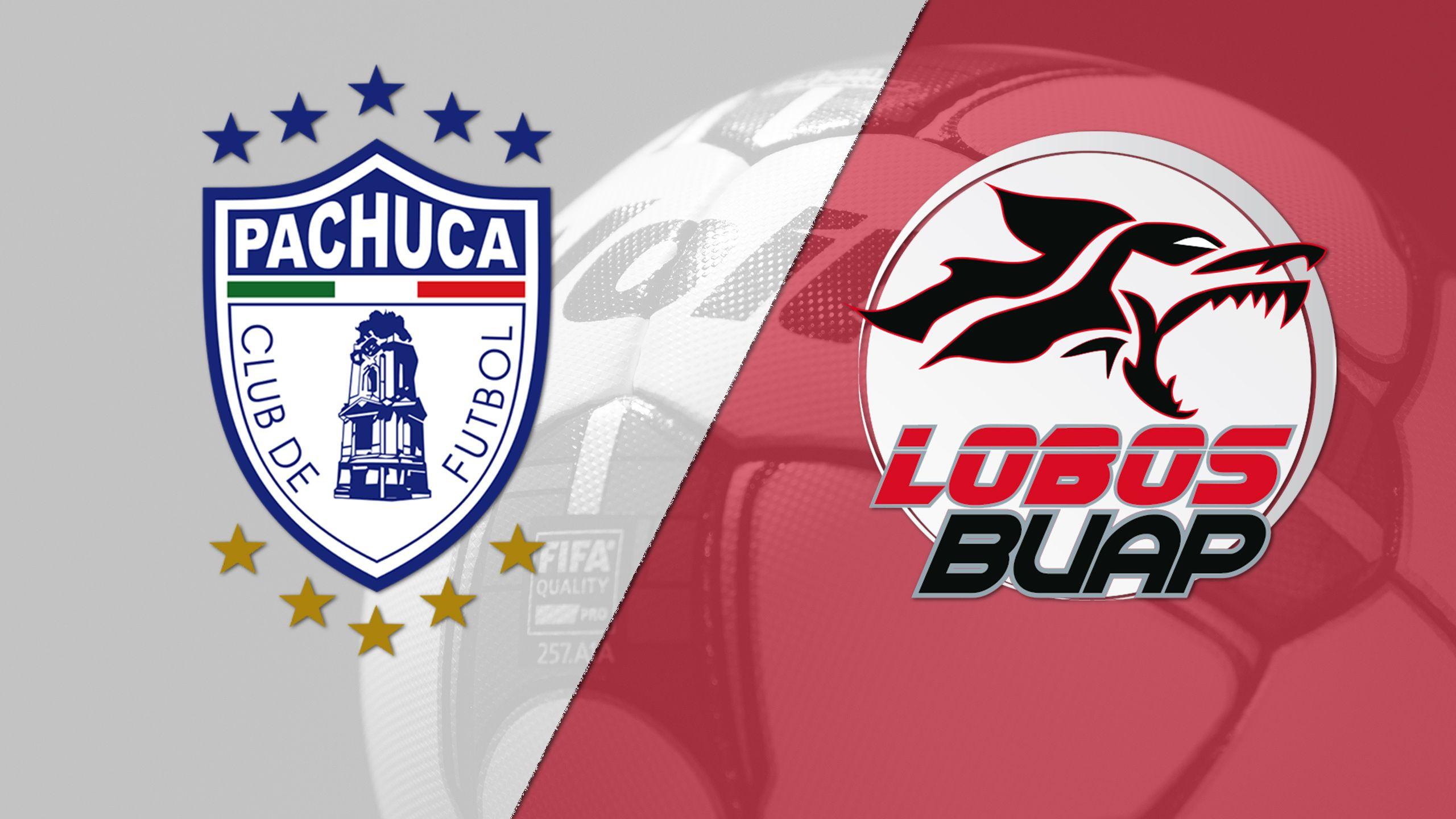 In Spanish - Tuzos del Pachuca vs. Lobos BUAP (Matchday #3) (Liga MX)
