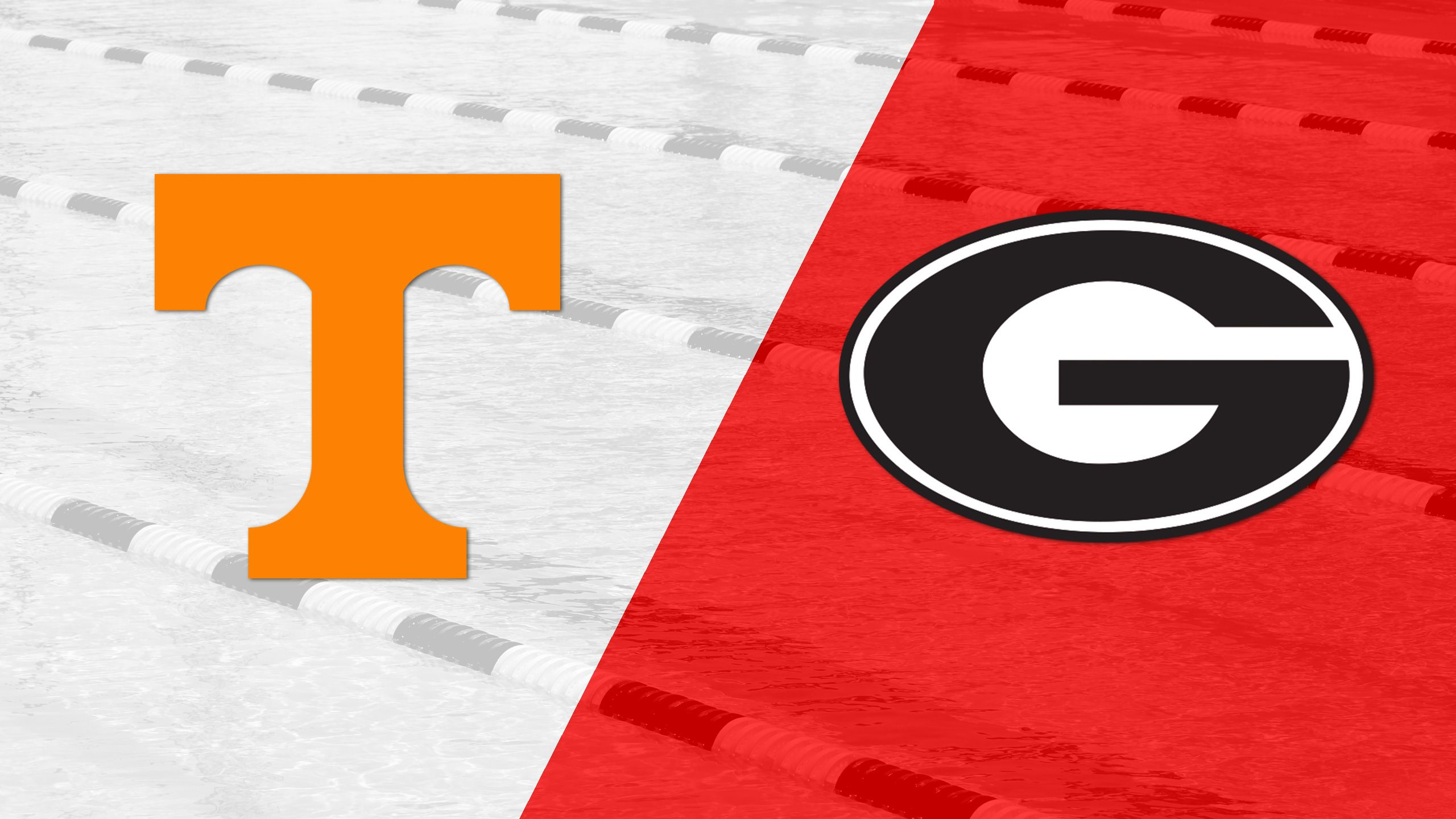 Tennessee vs. Georgia (Swimming & Diving)