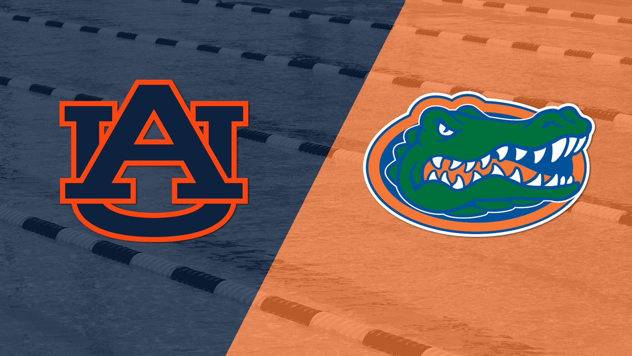 Auburn vs. Florida (Swimming and Diving)