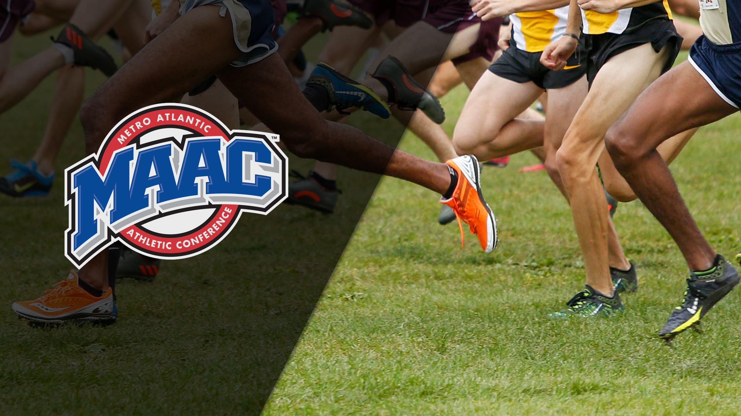 MAAC Cross Country Championships