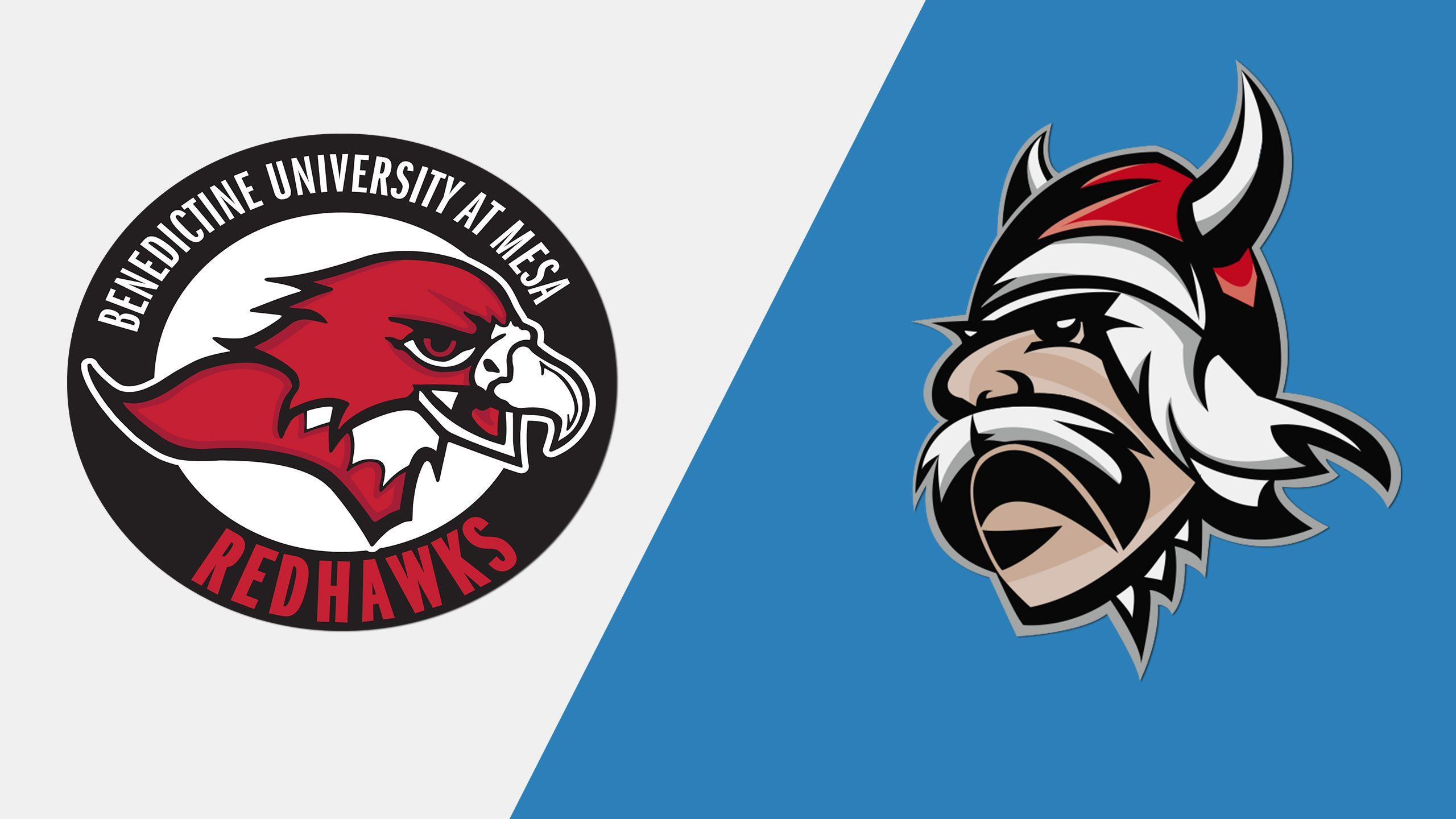Benedictine Mesa (AZ) vs. Grand View (Championship) (NAIA Men's Volleyball Invitational)