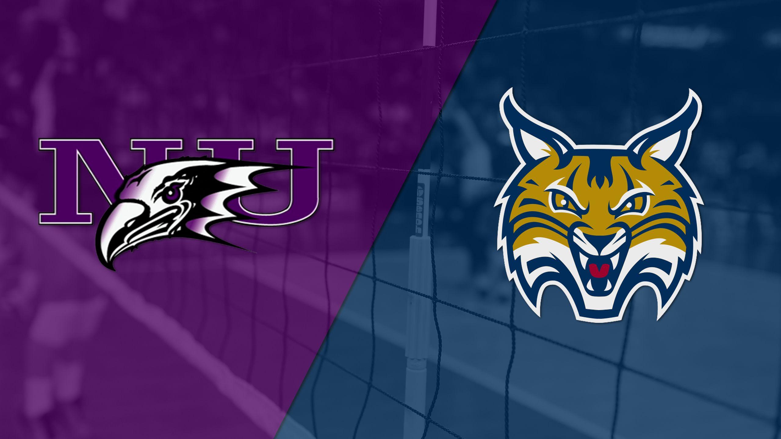 Niagara vs. Quinnipiac (First Round) (MAAC Women's Volleyball Championship)