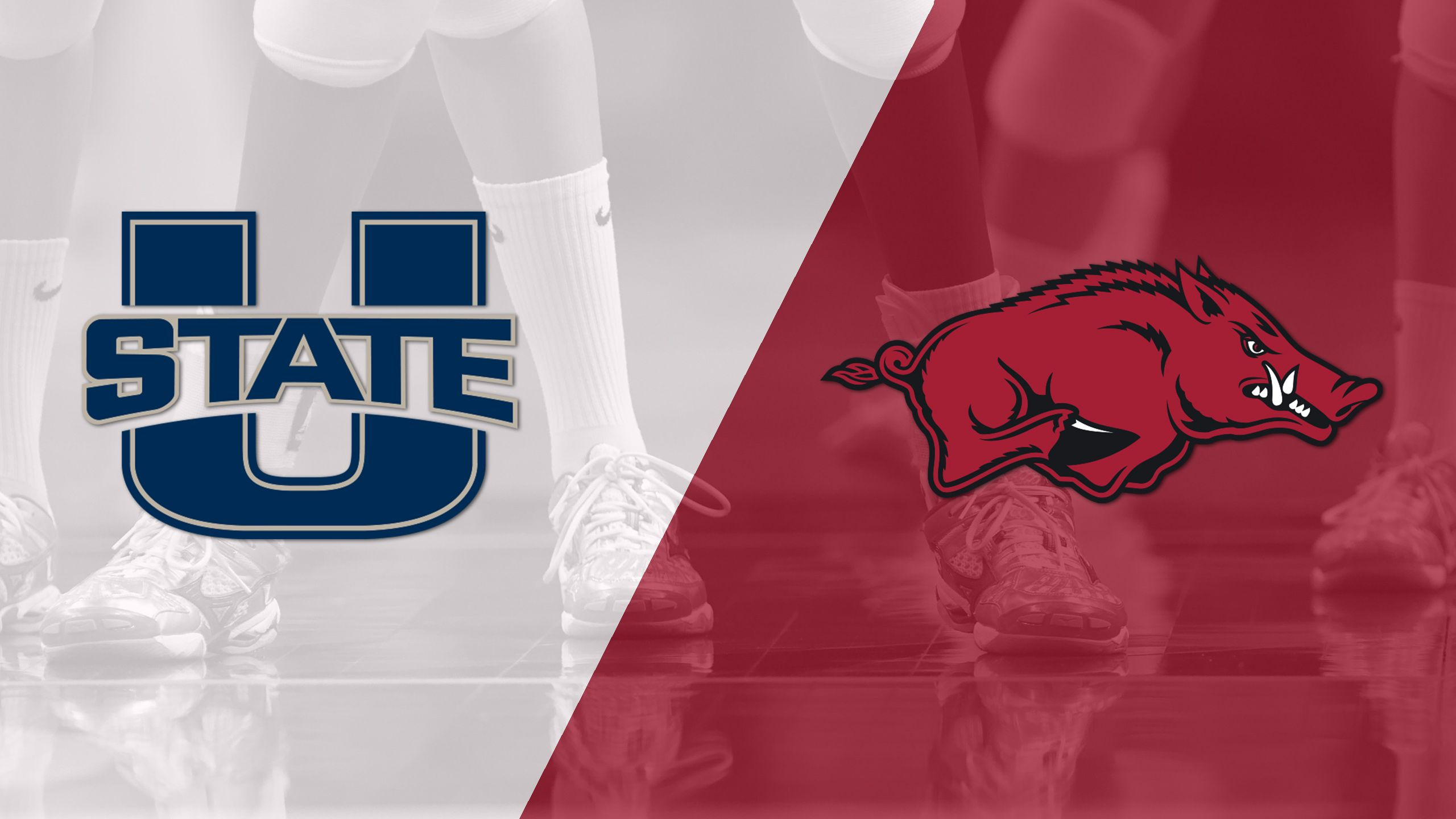 Utah State vs. Arkansas (W Volleyball)