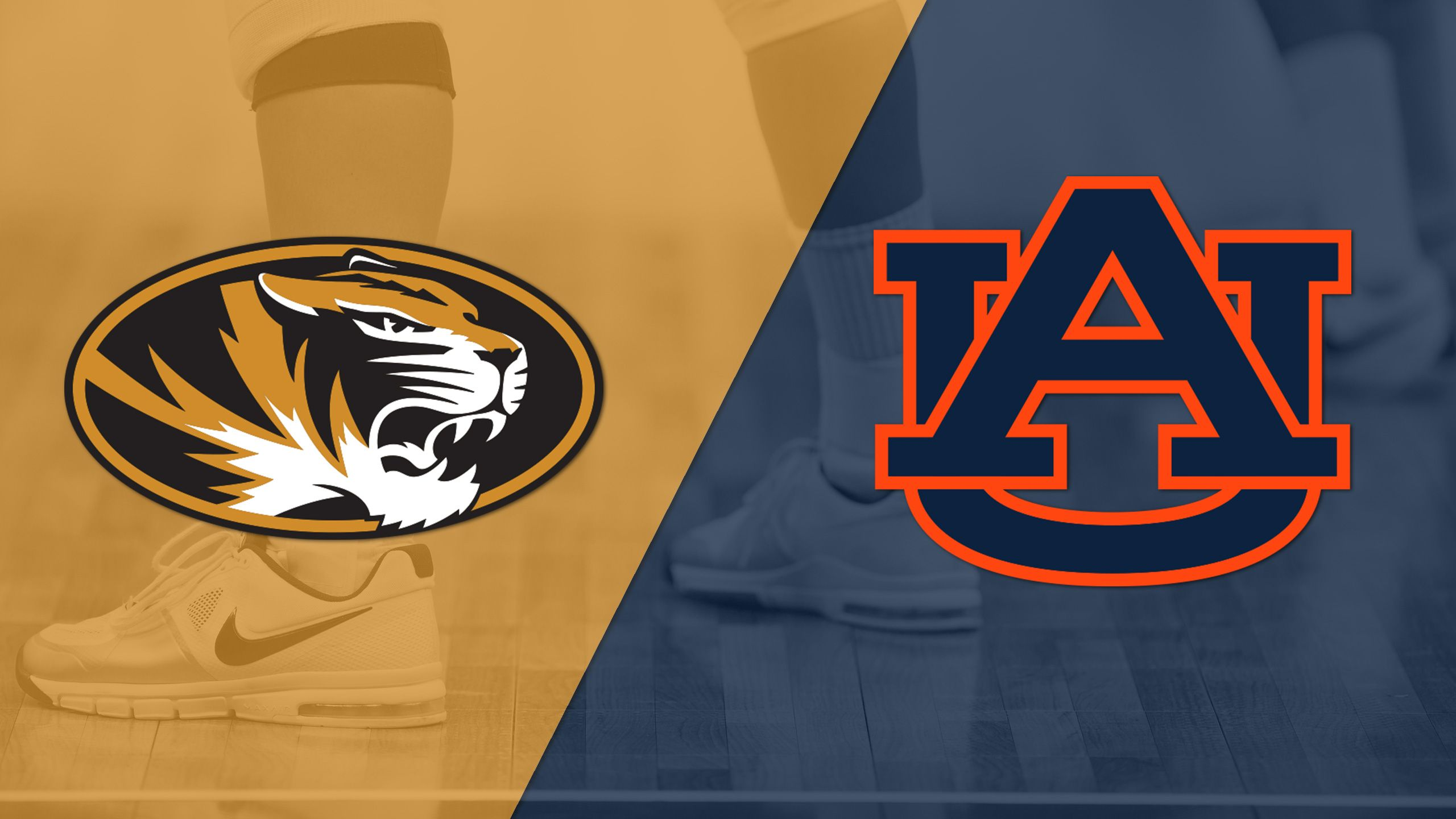 Missouri vs. Auburn (W Volleyball)