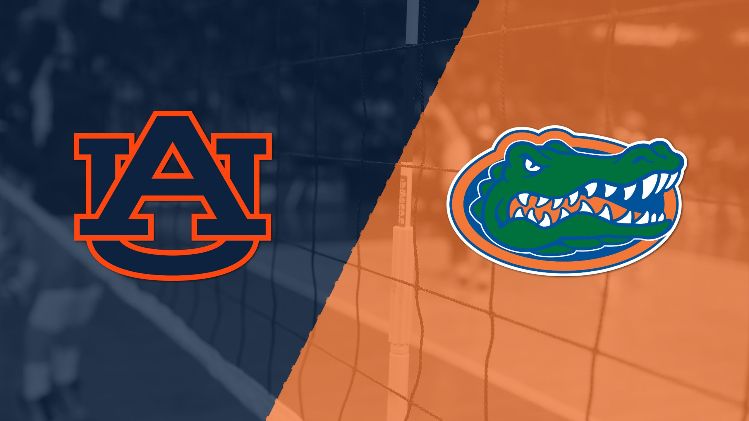 Auburn vs. #3 Florida (W Volleyball)