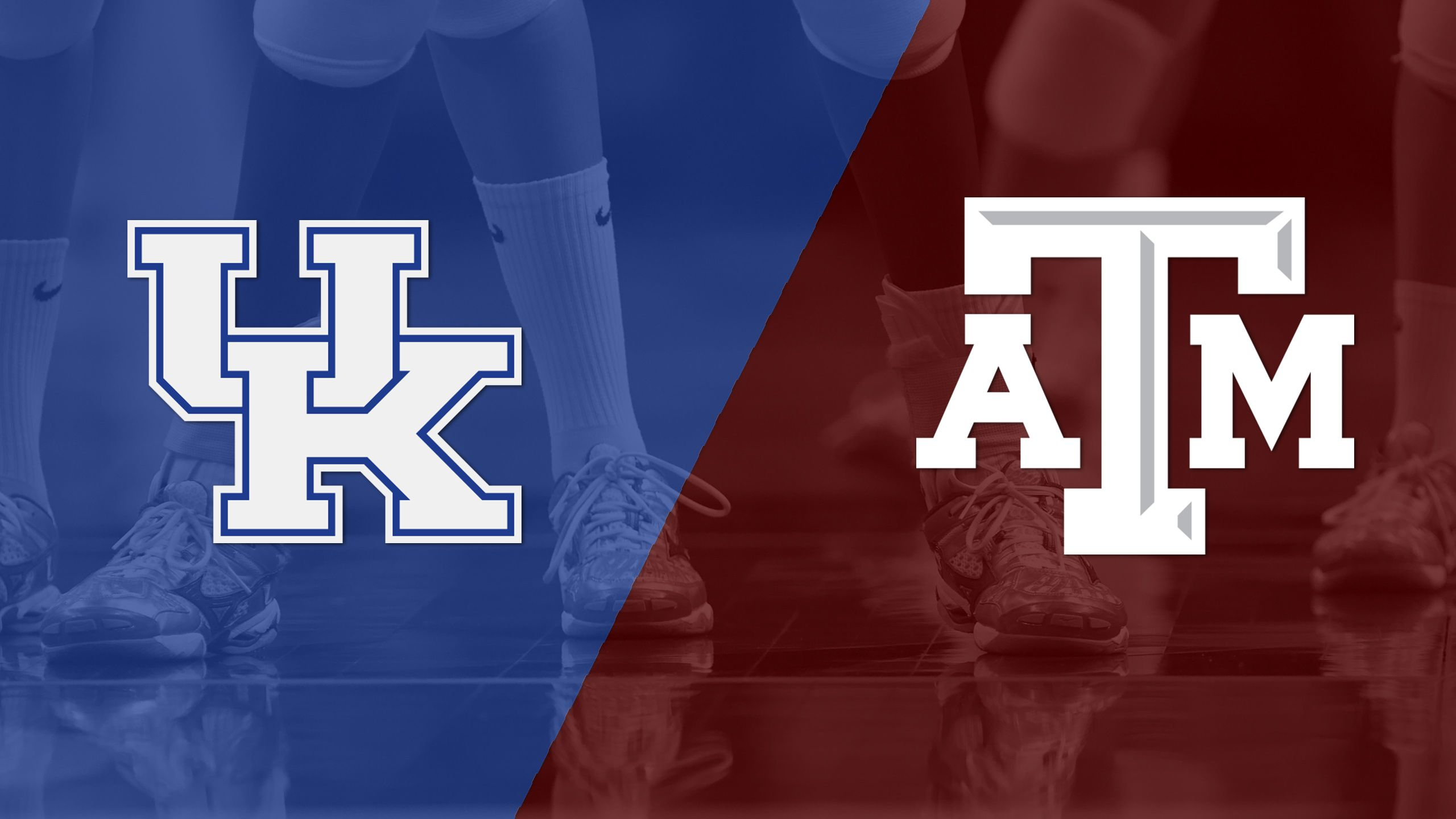 #6 Kentucky vs. Texas A&M (W Volleyball)