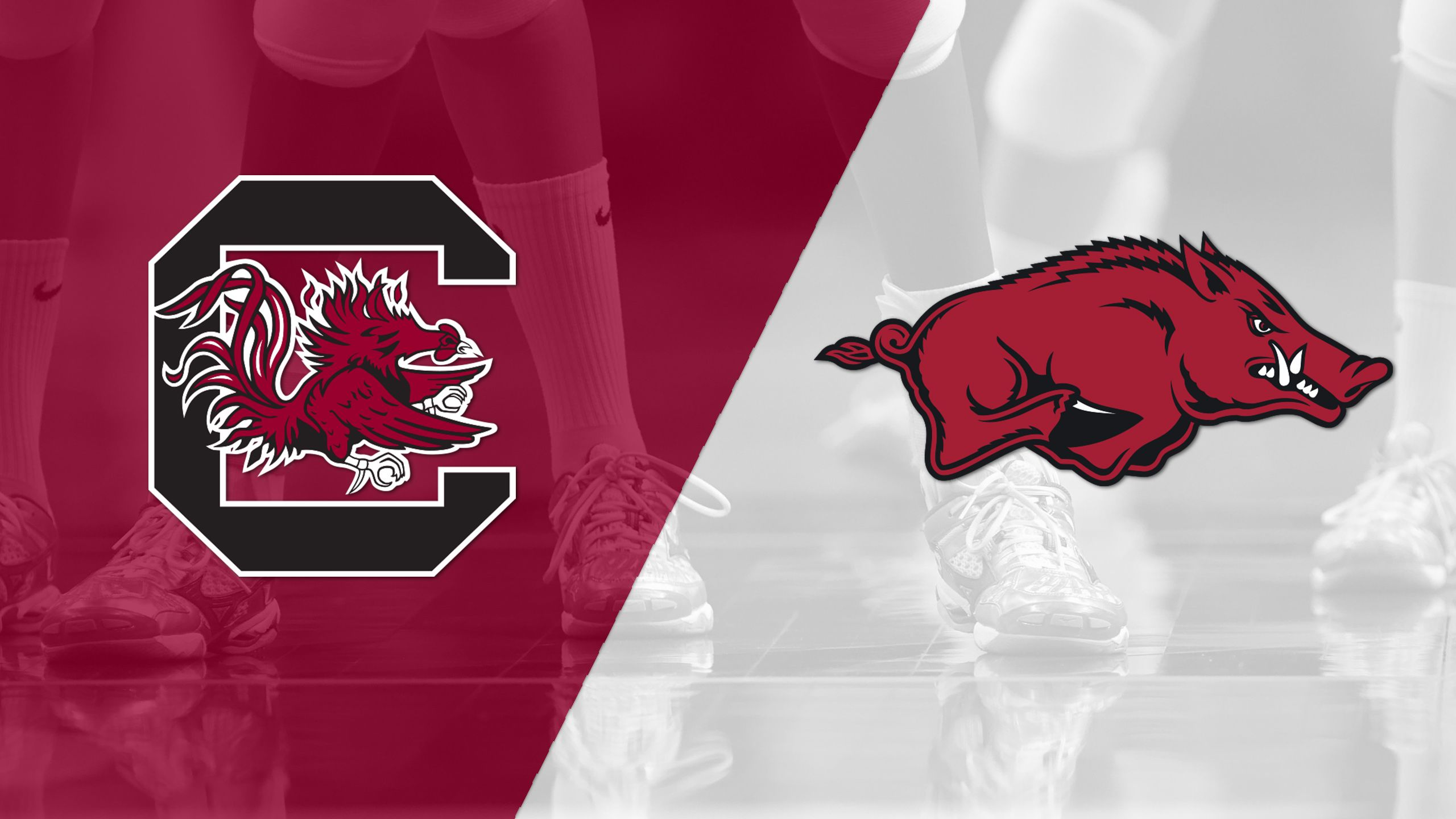 South Carolina vs. Arkansas (W Volleyball)