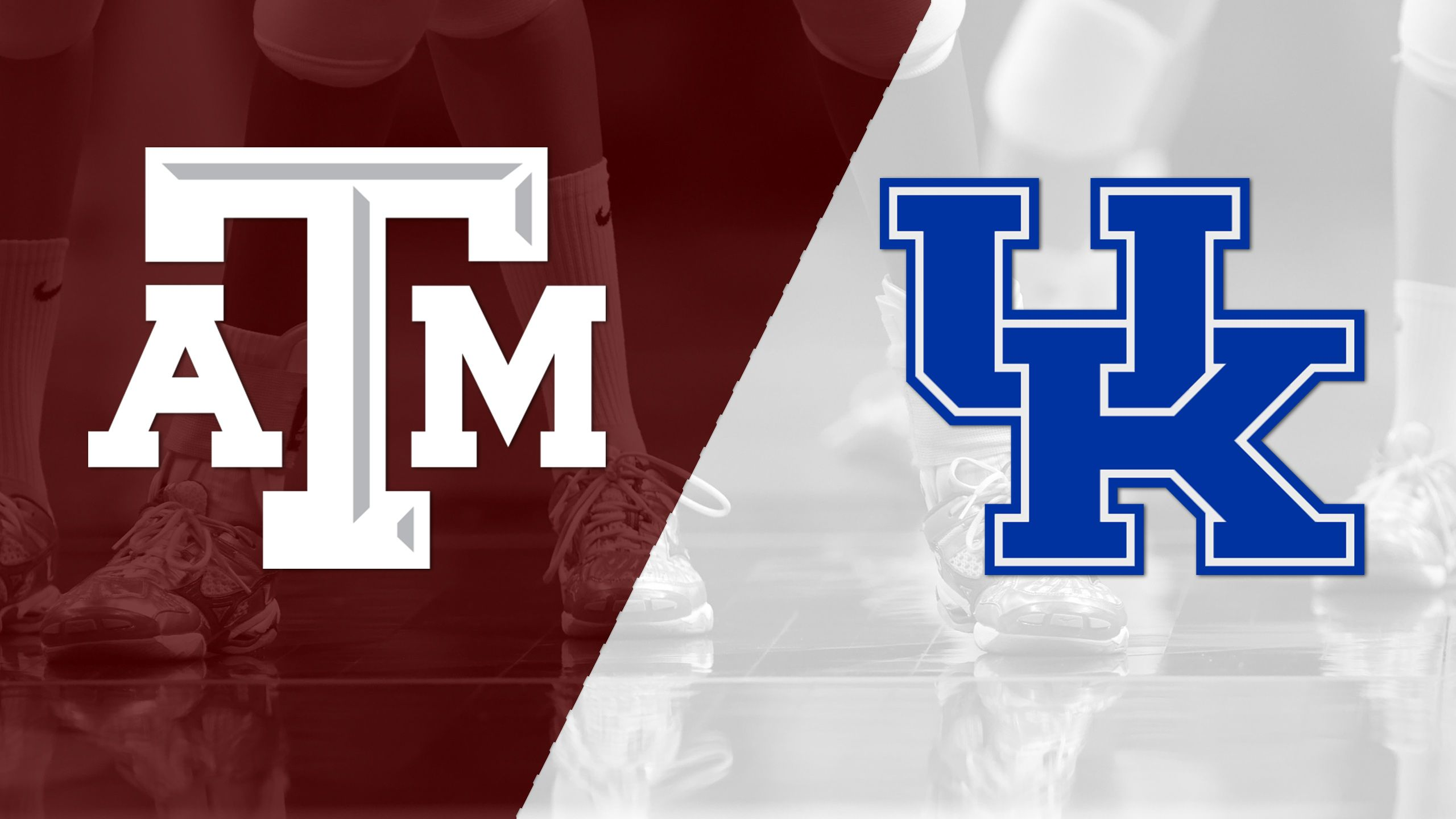 Texas A&M vs. #8 Kentucky (W Volleyball)